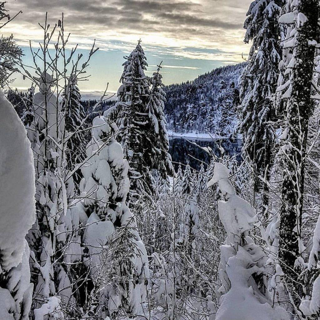 Vue sur le lac Blanc dans les Vosges en hiver pendant une randonnée en raquettes