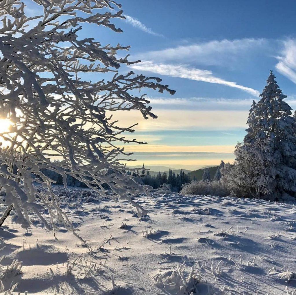 Paysage des Vosges en hiver
