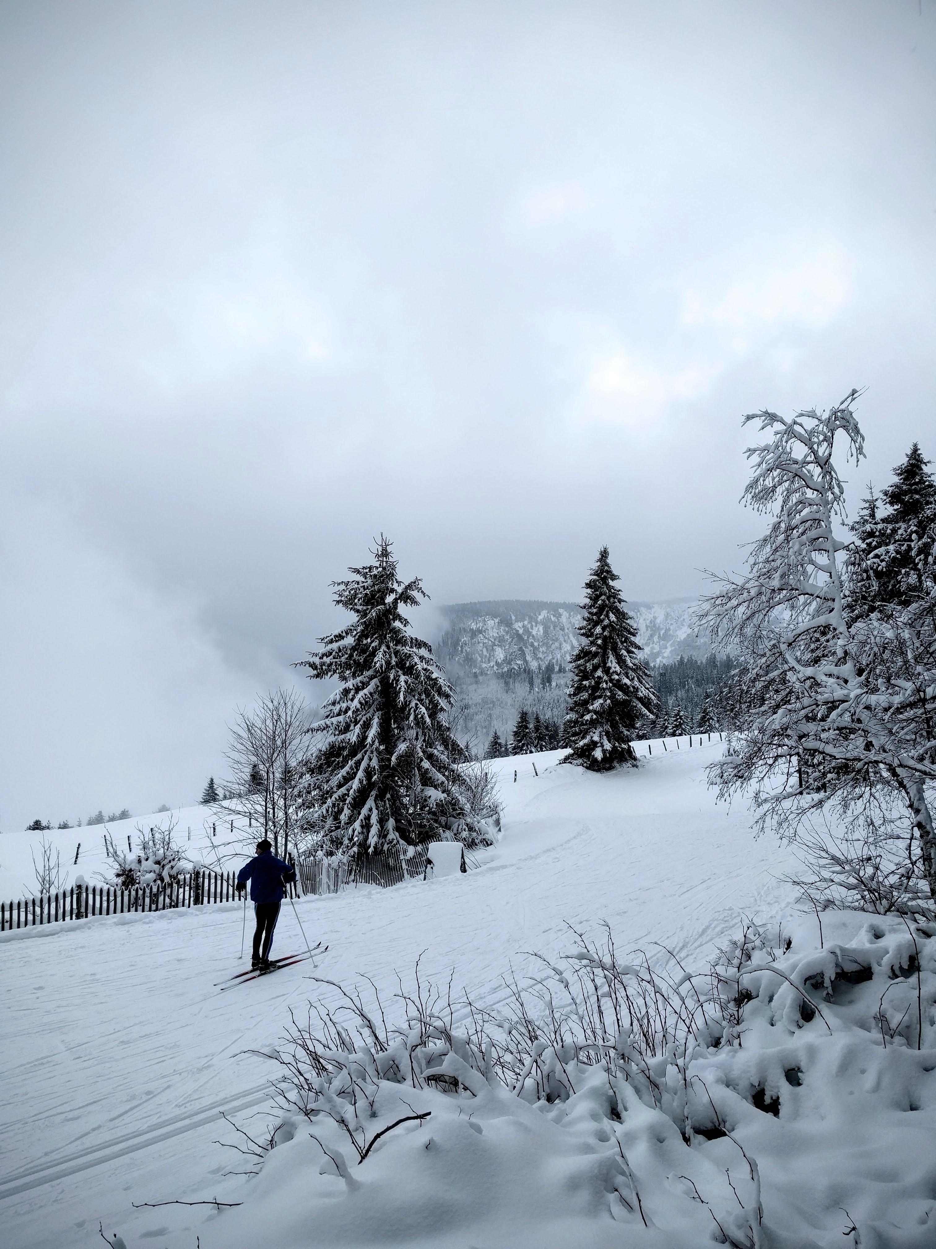 homme sur des skis de fond devant un paysage d'hiver