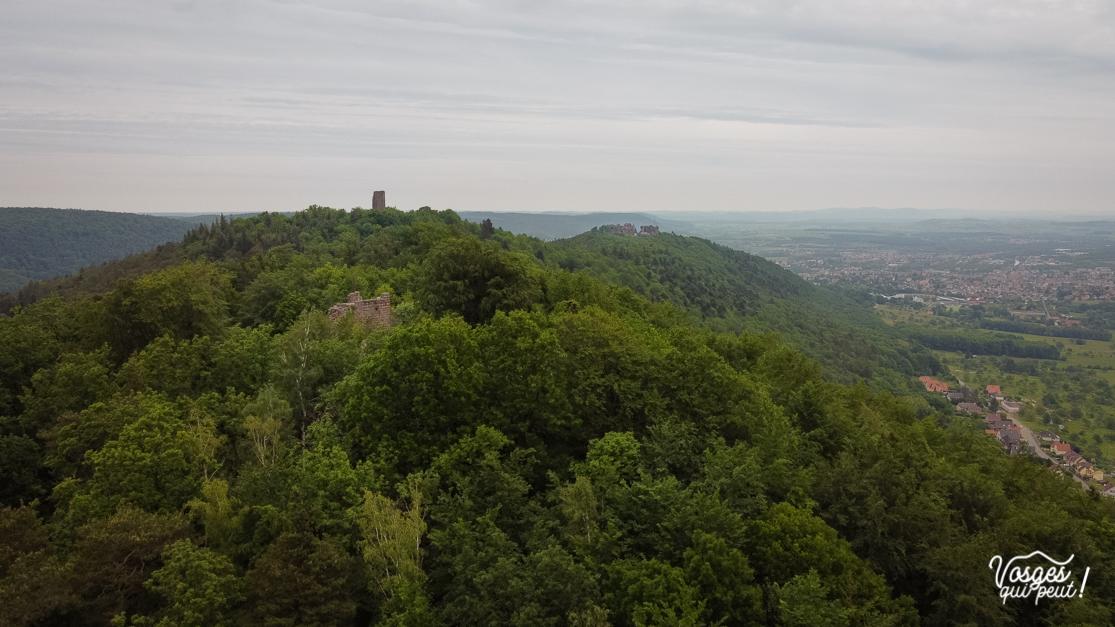 Vue aérienne des ruines des trois châteaux forts au-dessus de Saverne en Alsace