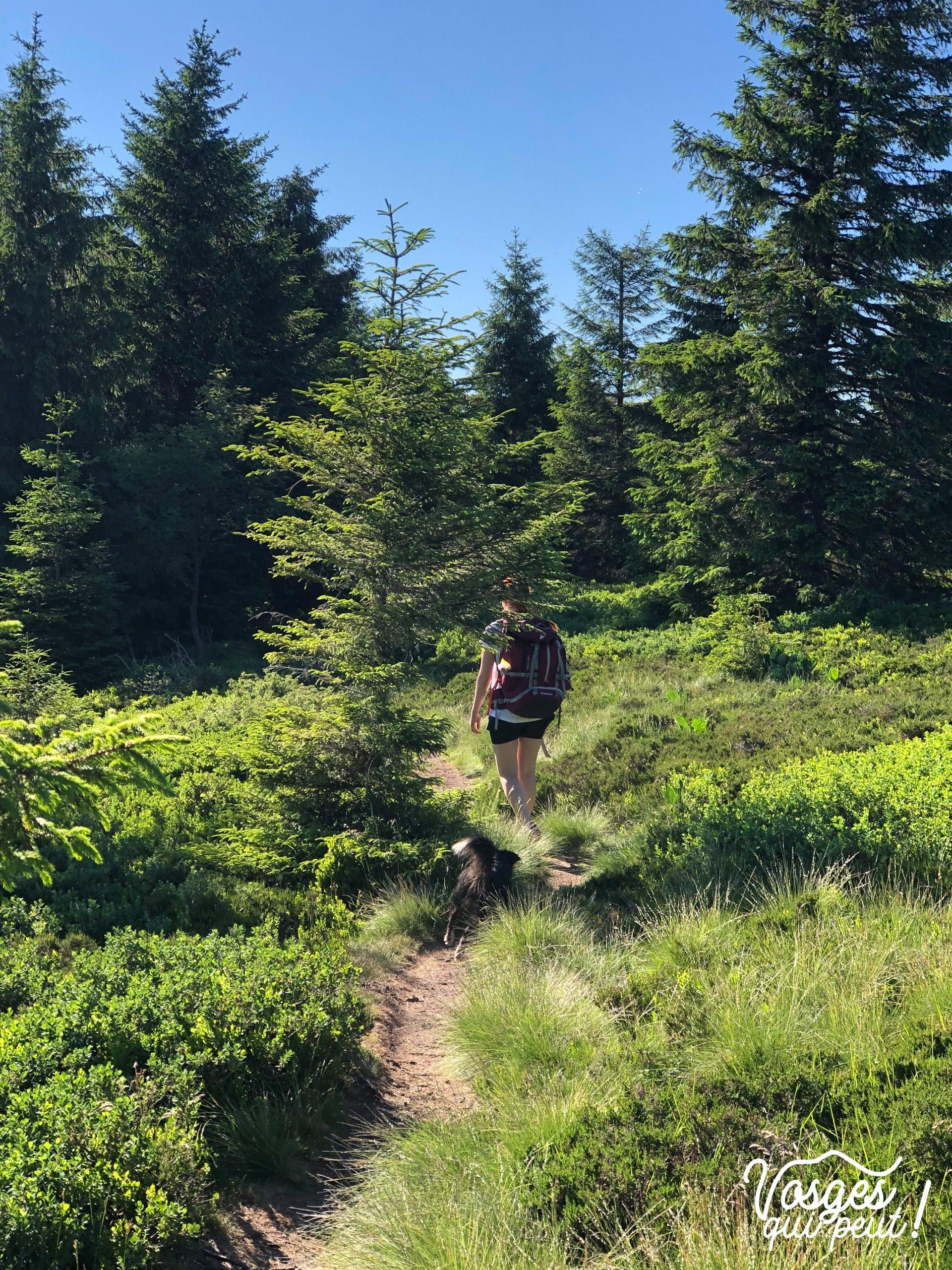 Randonneuse sur les chaumes des Vosges