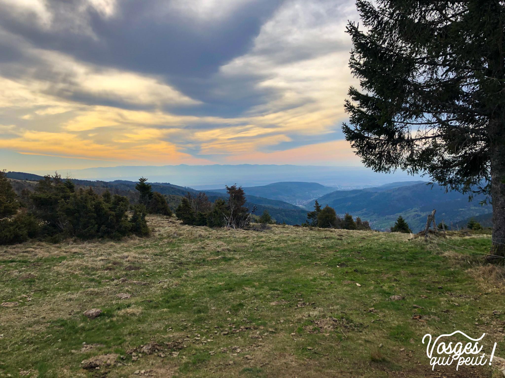 Vue sur la Forêt Noire depuis le Hilsenfirst dans le Massif des Vosges