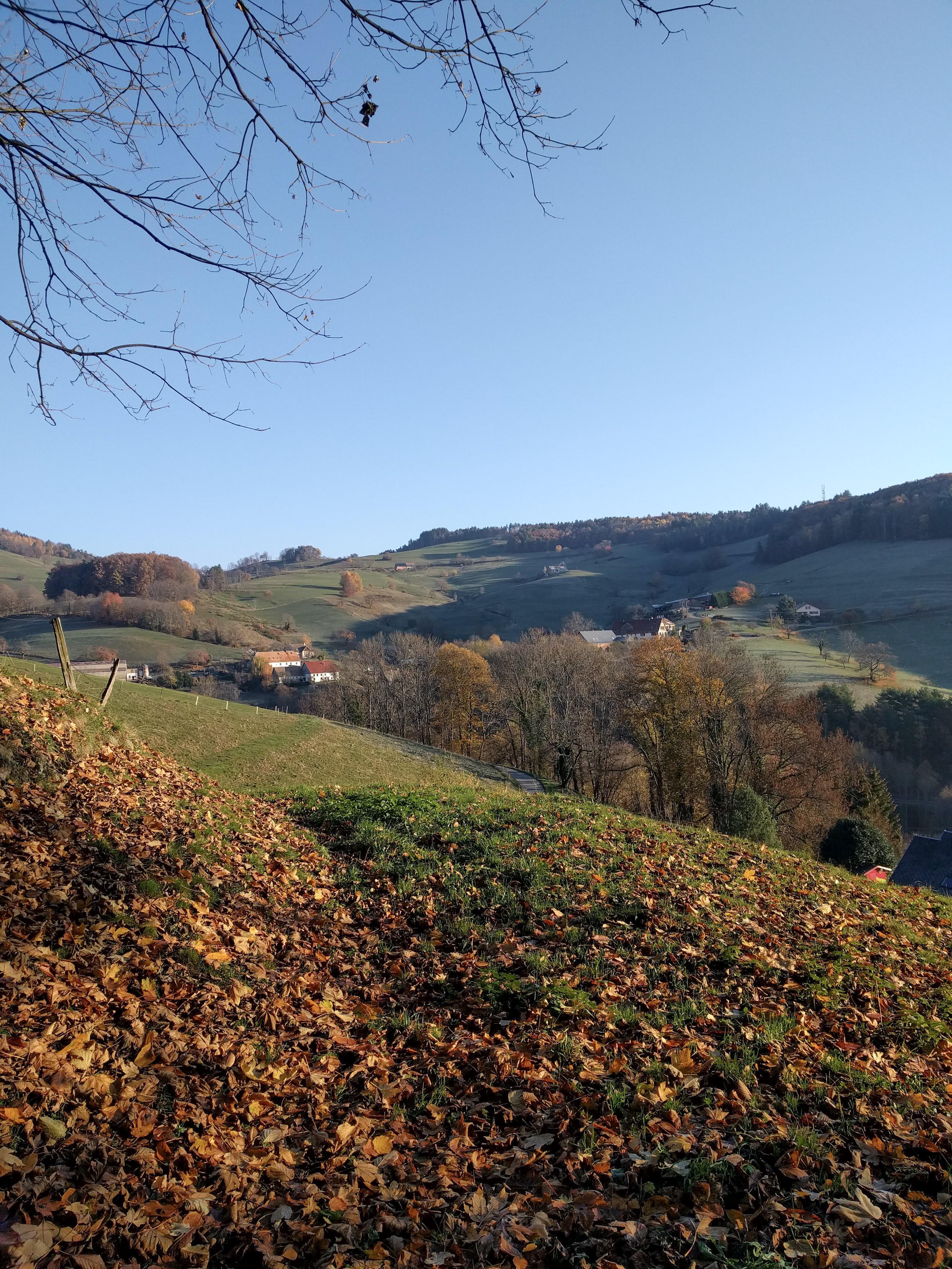 Panorama sur la vallée de la Weiss en automne