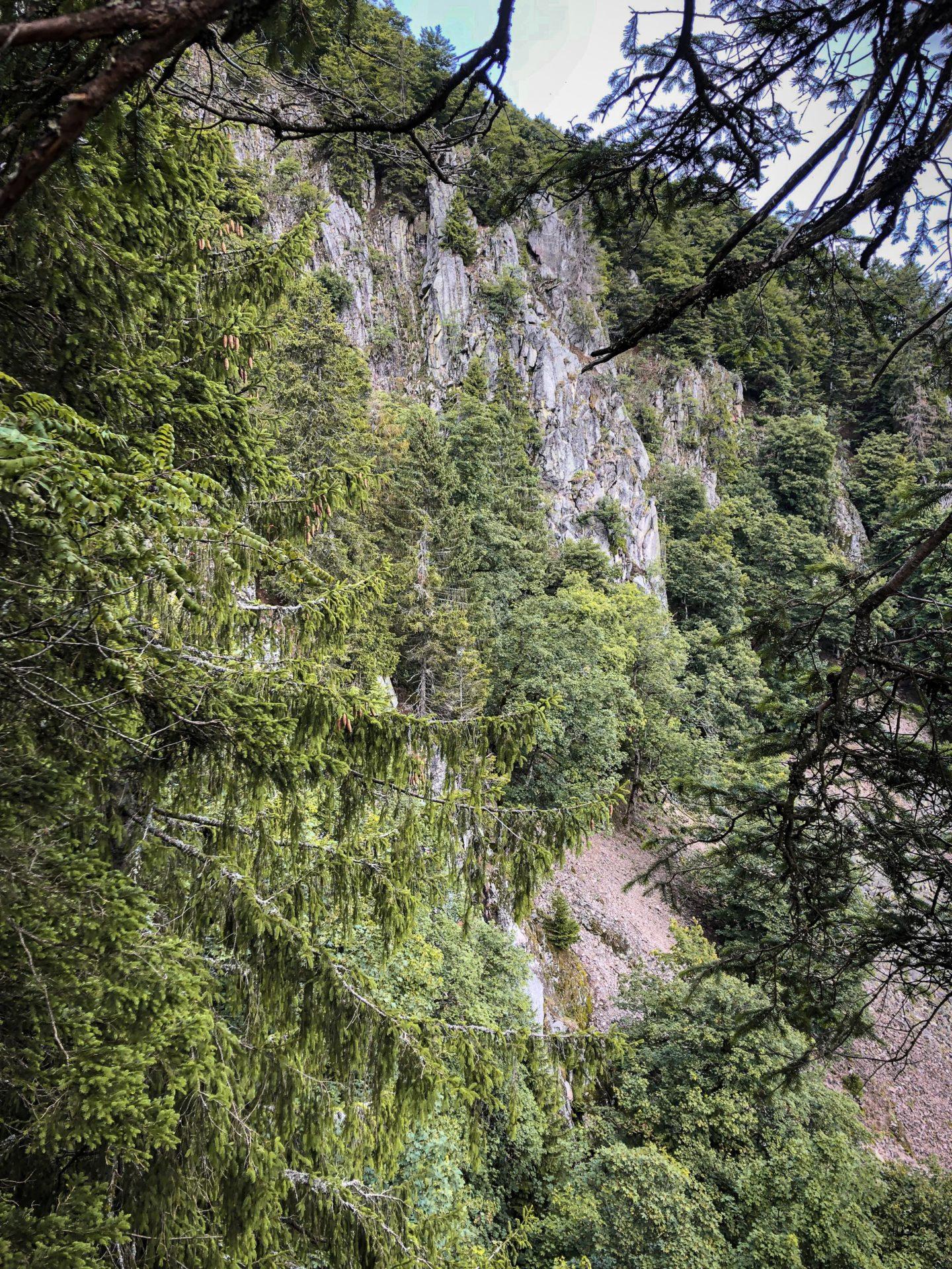 Falaises de granit sur le sentier des Roches dans les Vosges
