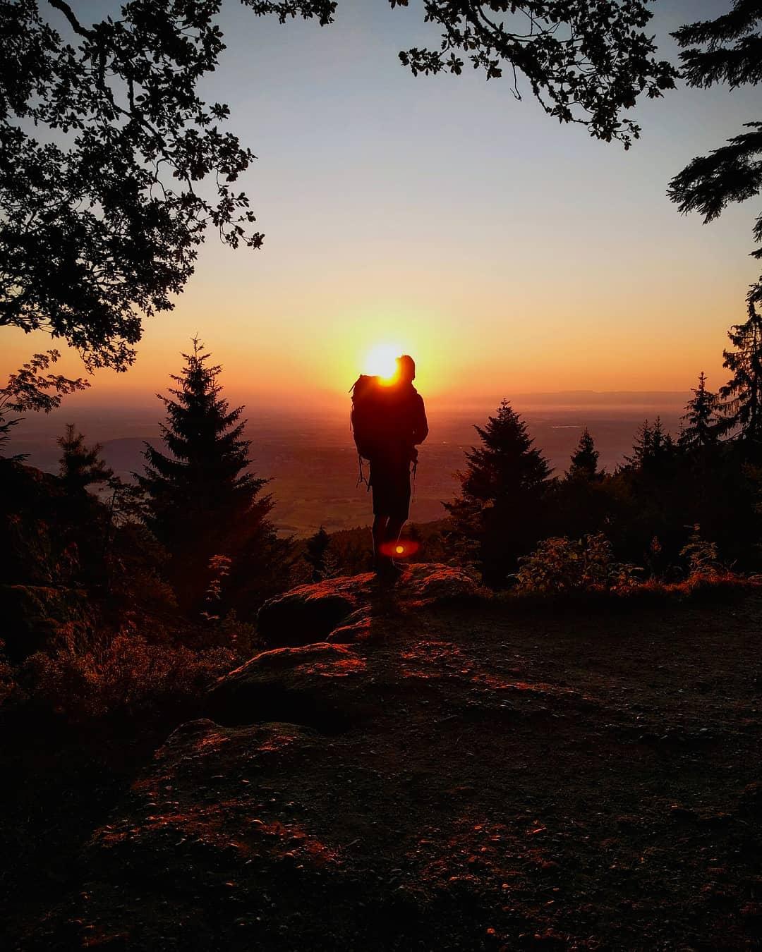 Lever de soleil depuis le rocher du panorama à côté du Mont Sainte-Odile en Alsace