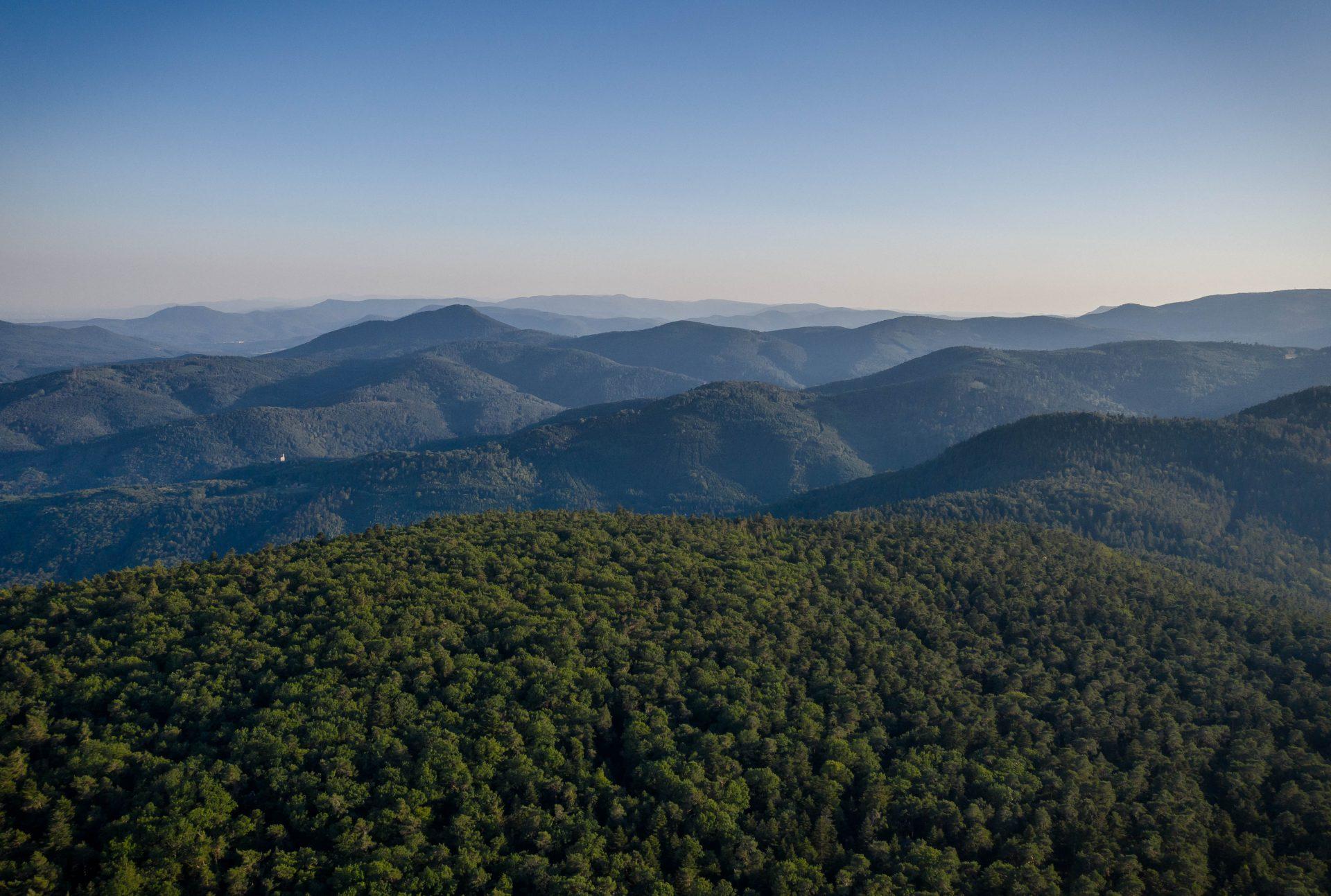 Vue aérienne depuis le Maennelstein sur le Massif des Vosges