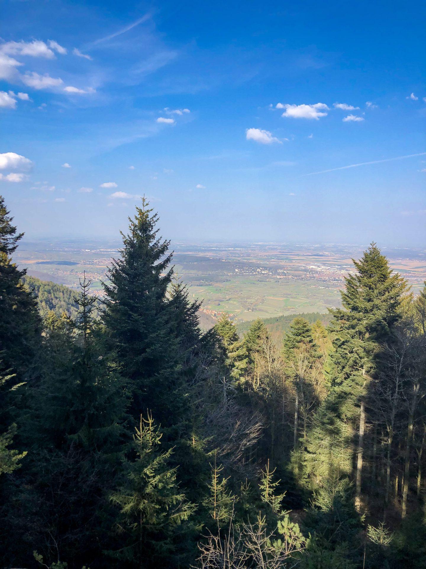 Panorama depuis le Maennelstein dans les Vosges