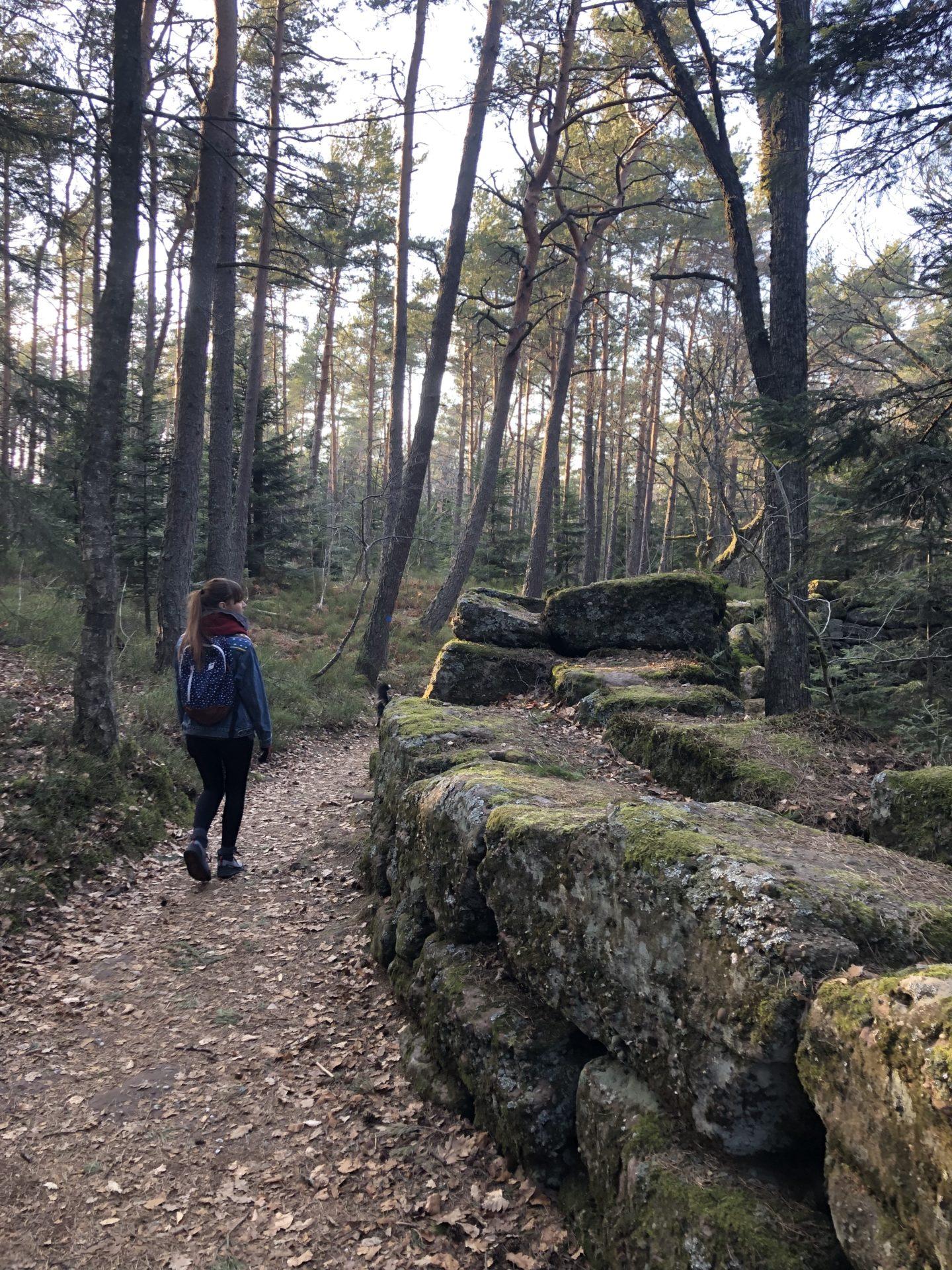 Une jeune femme marche le long du mur païen à côté du Mont Sainte-Odile dans les Vosges
