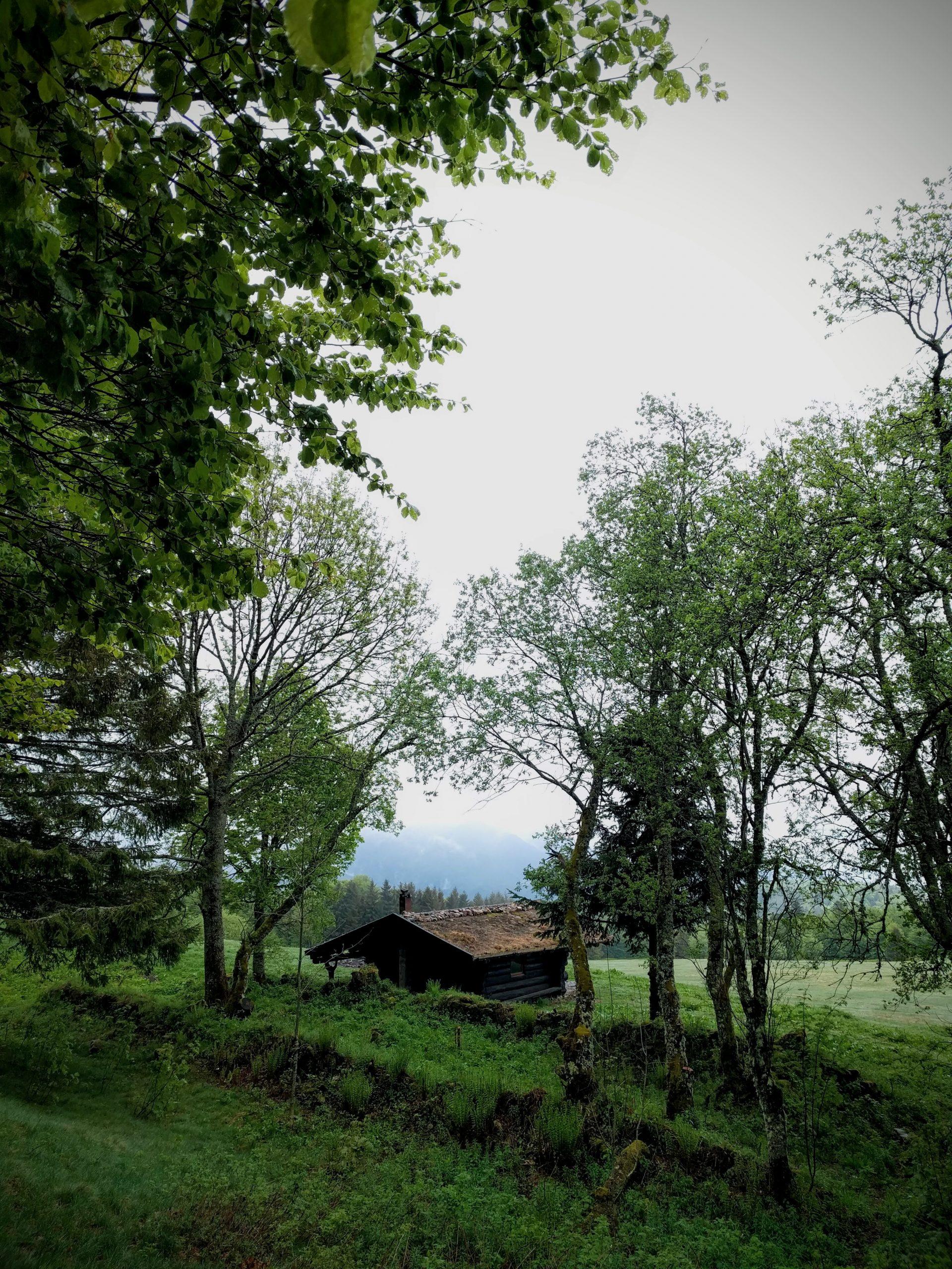 La cabane de la Haute Bers dans les Vosges