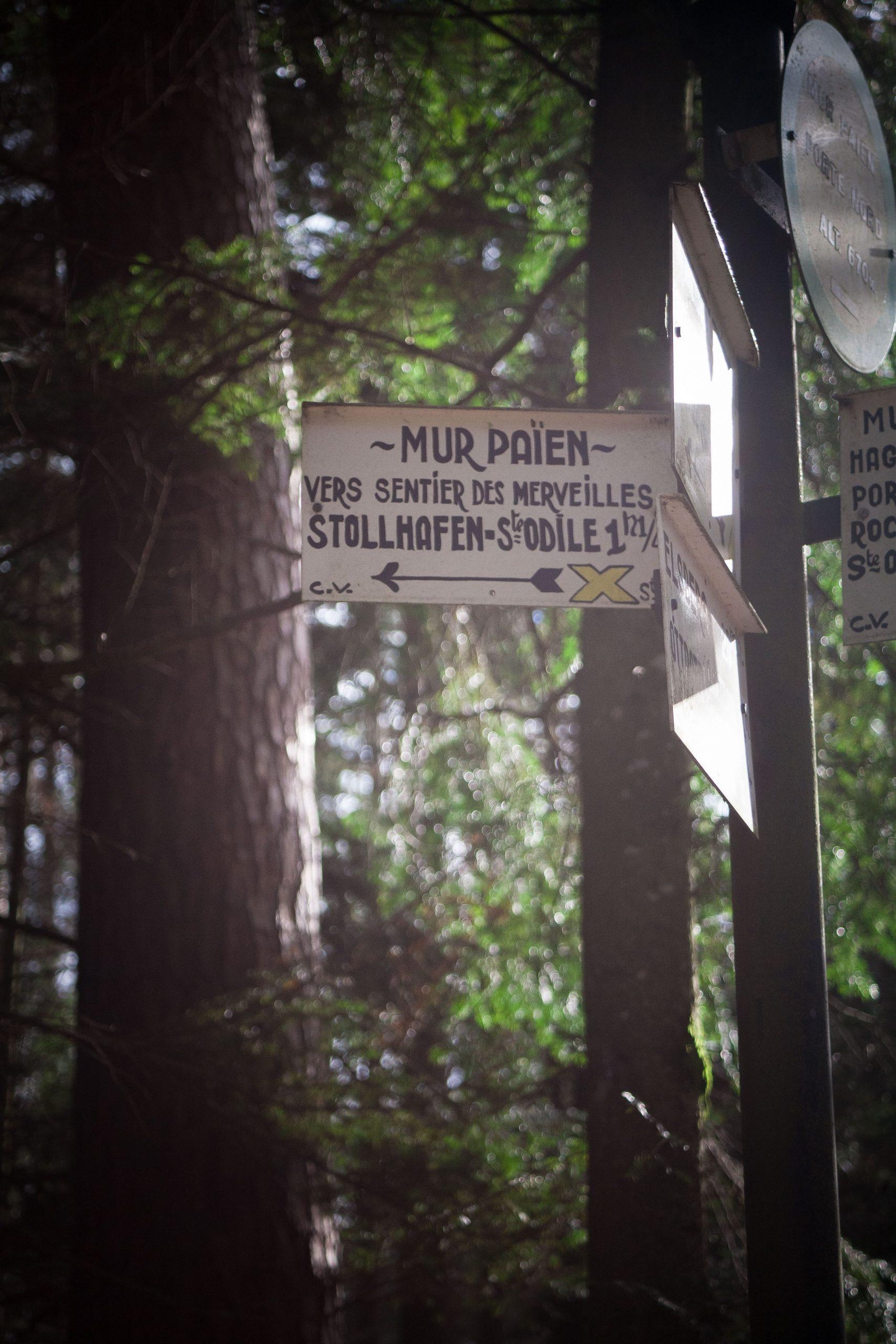 Panneau directionnel indiquant le Sentier des Merveilles à côté du Mont Sainte-Odile