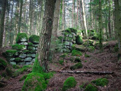 Les ruines du mur païen autour du Mont Sainte-Odile au milieu de la forêt