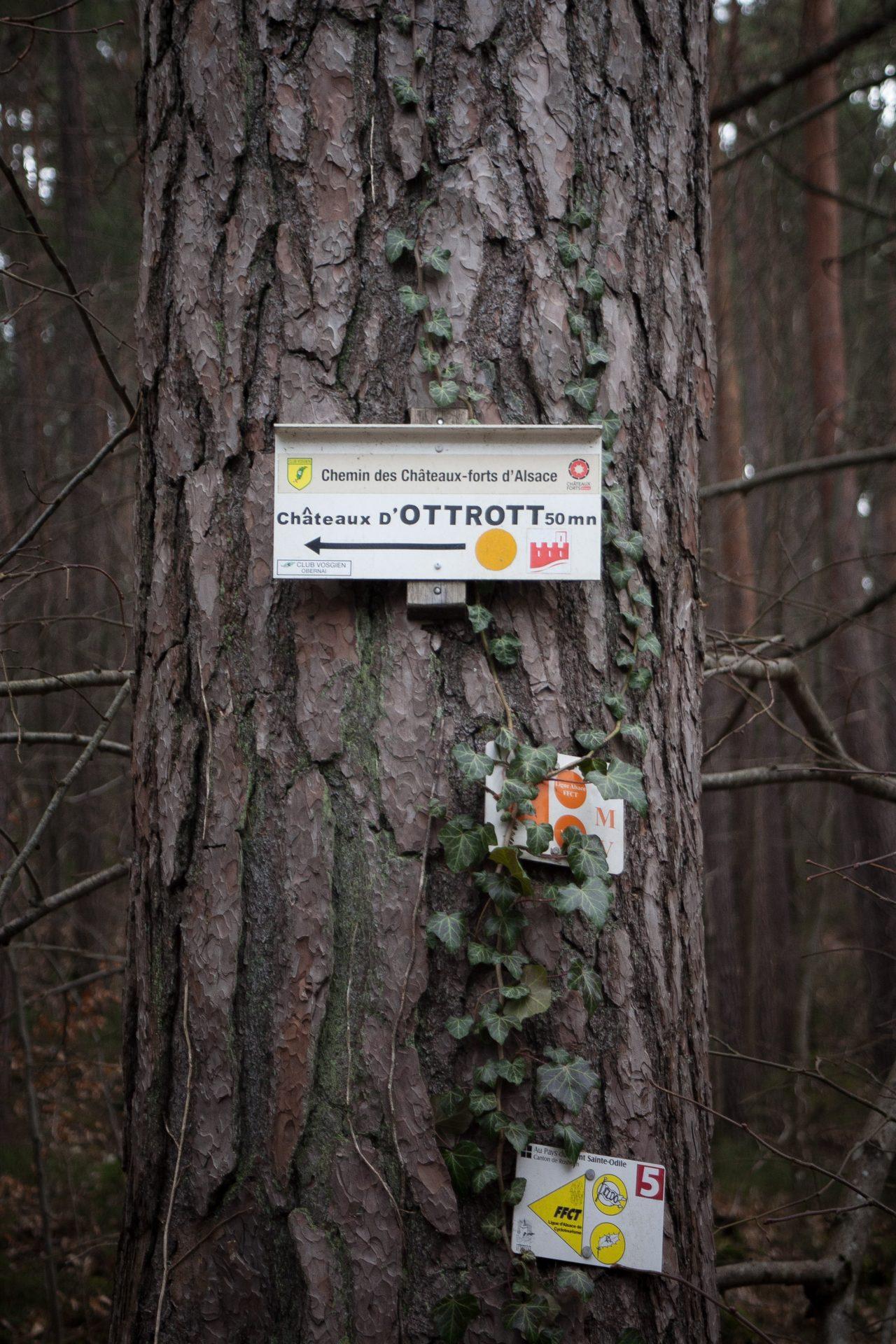 Panneau directionnel indiquant les châteaux d'Ottrott à côté du Mont Sainte-Odile