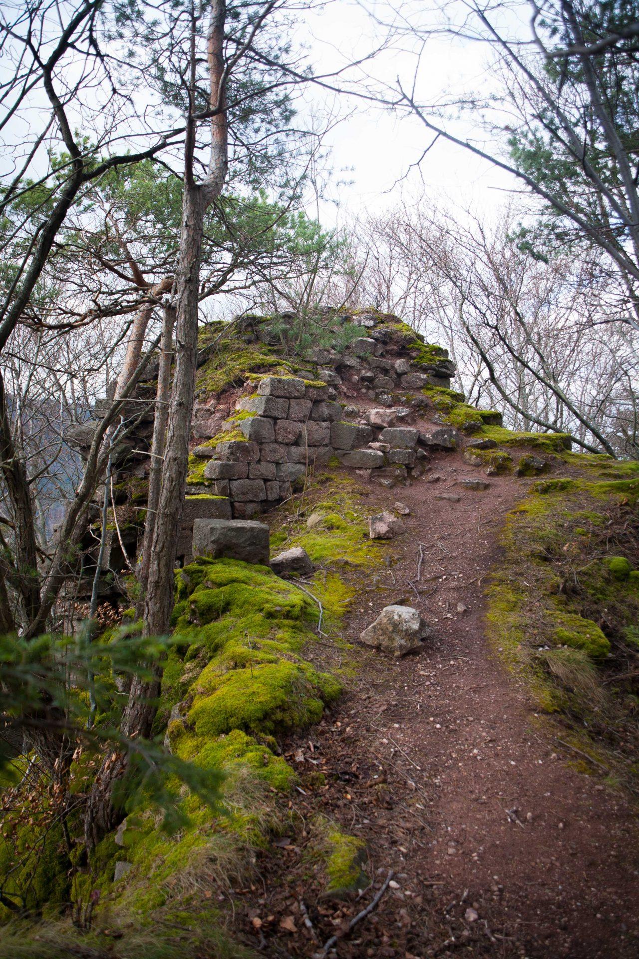 Les vestiges du château du Hagleschloss dans les Vosges
