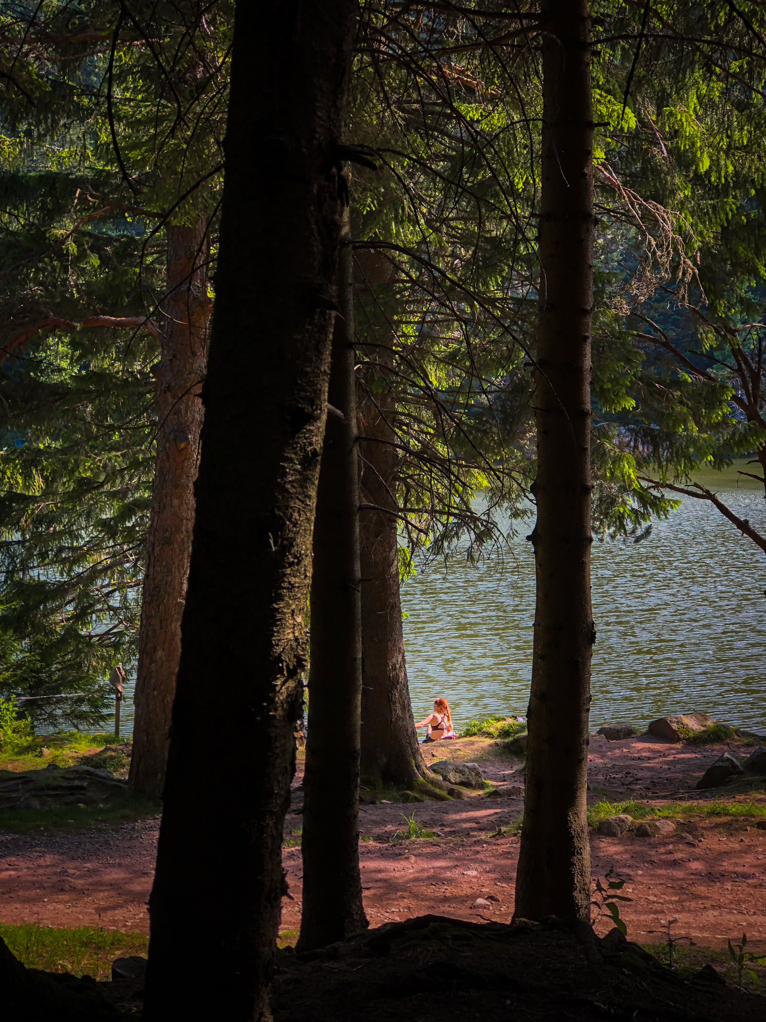 Une jeune femme bronze sur les berges du lac du Forlet dans le Massif des Vosges