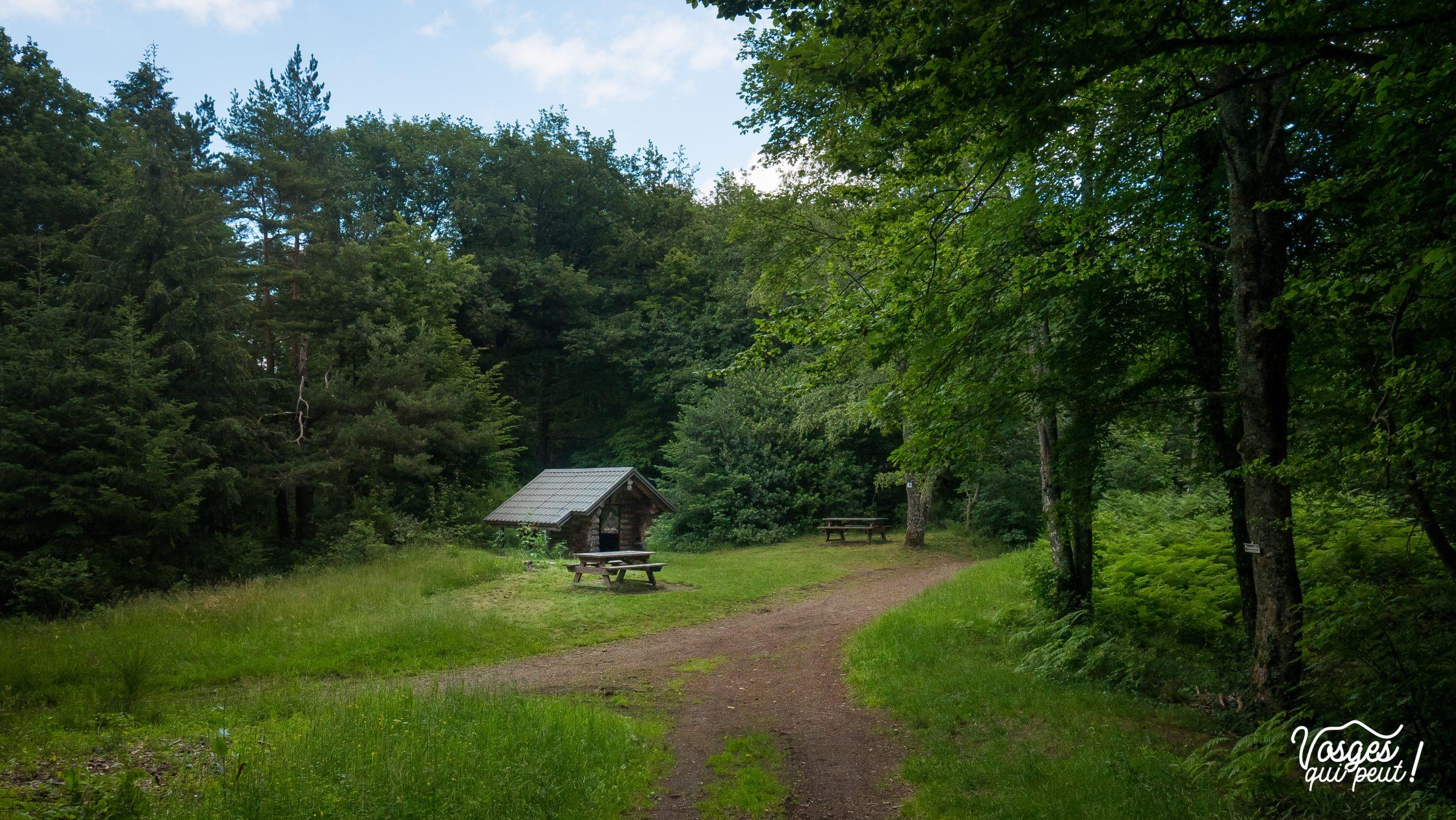 Abri pour randonneurs et tables de pique-nique au col de Peternit dans le Florival à côté de Guebwiller en Alsace