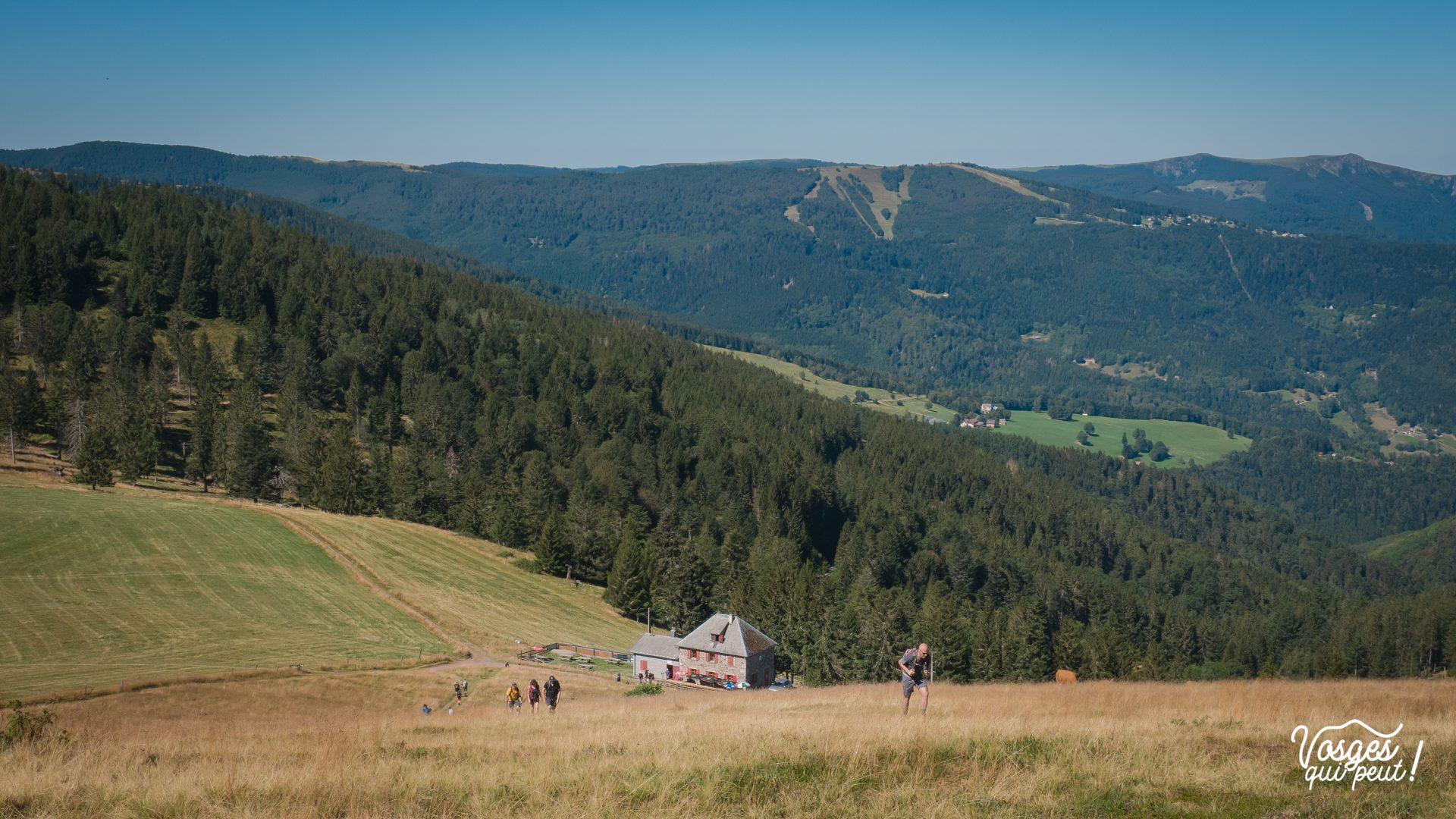 Des marcheurs avancent vers le sommet du Petit Ballon pendant une randonnée en Alsace