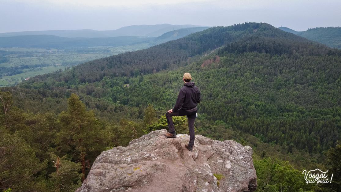 Randonneur se tenant de dos face à un panorama dans les Vosges
