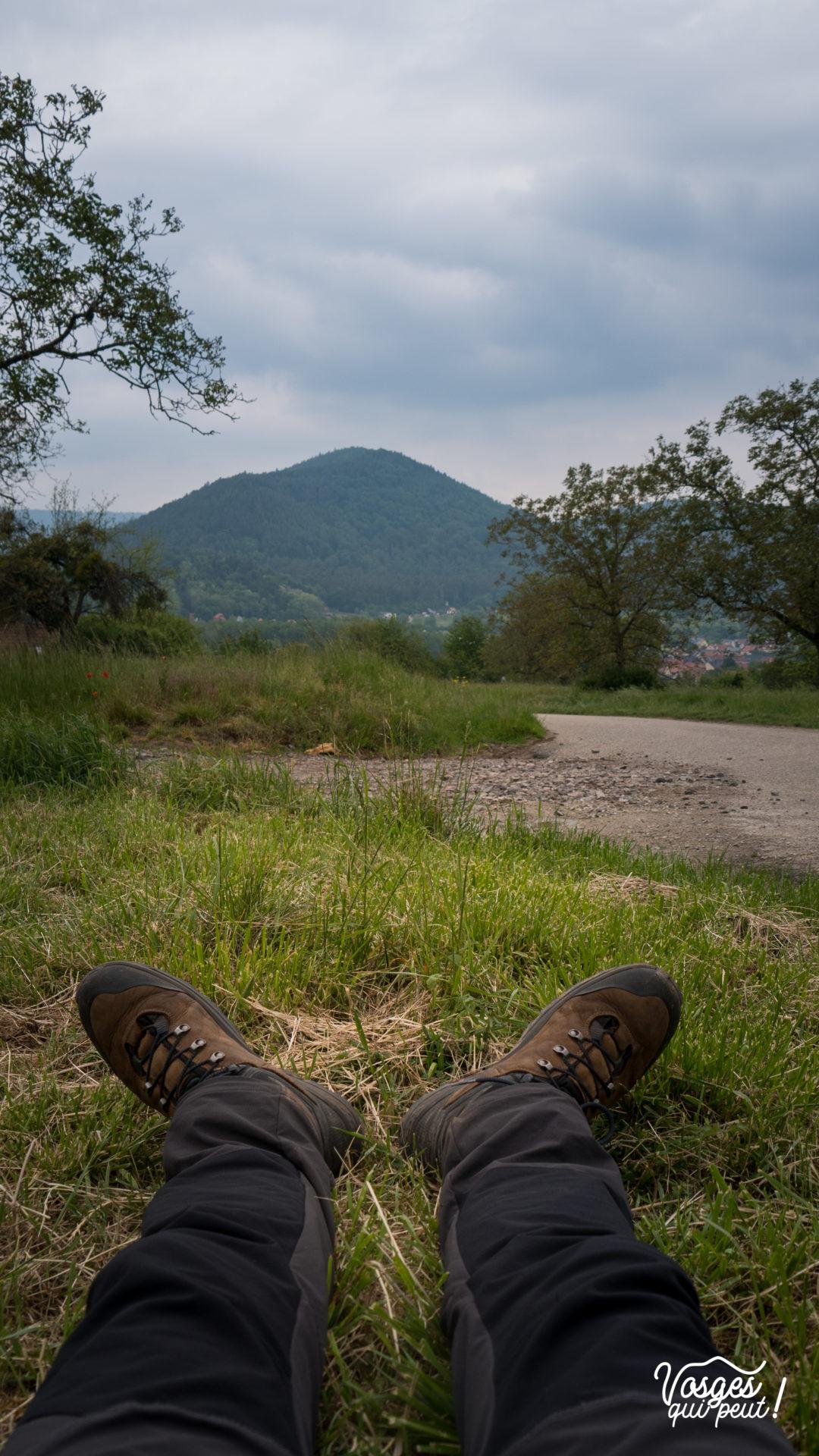 Les chaussures d'un randonneur dans les Vosges en Alsace