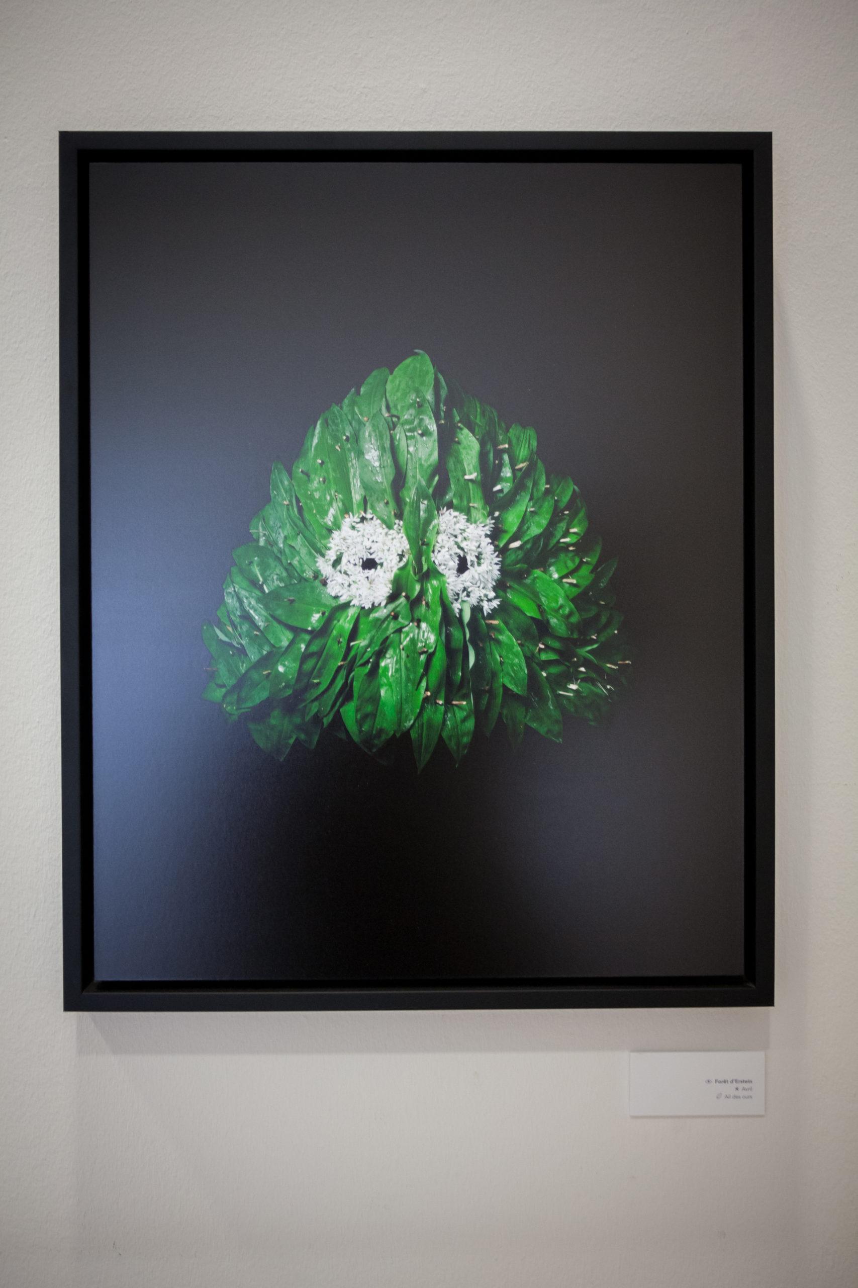 Photographie de masque du projet « Être(s » réalisé par l'artiste plasticien Hugo Mairelle et le photographe Vincent Muller