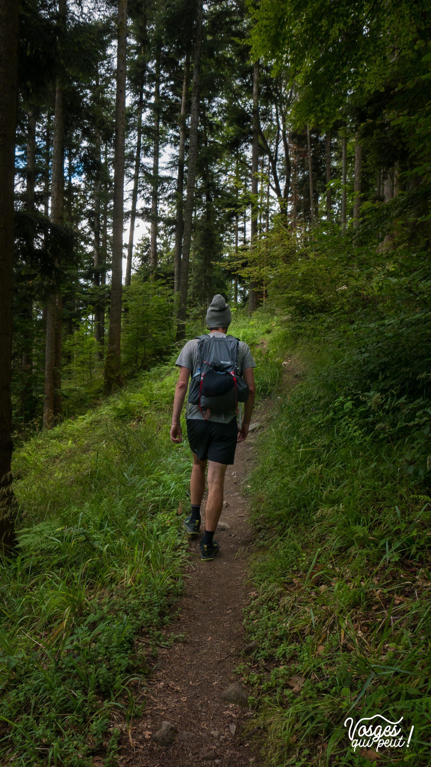 Randonneur sur un sentier dans les Vosges