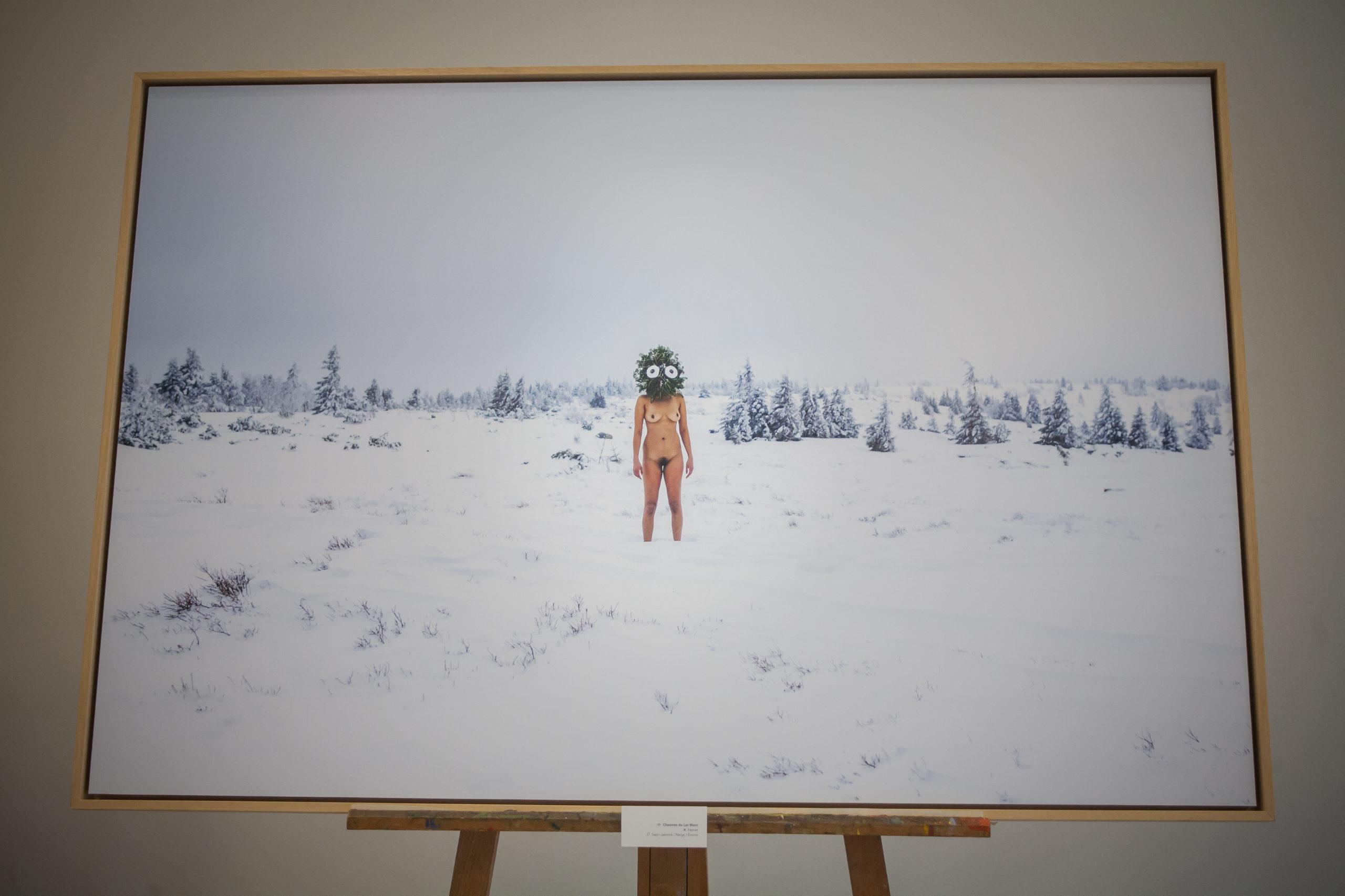 Une œuvre du projet photo « Être(s) » réalisé par le plasticien Hugo Mairelle et le photographe Vincent Muller en Alsace