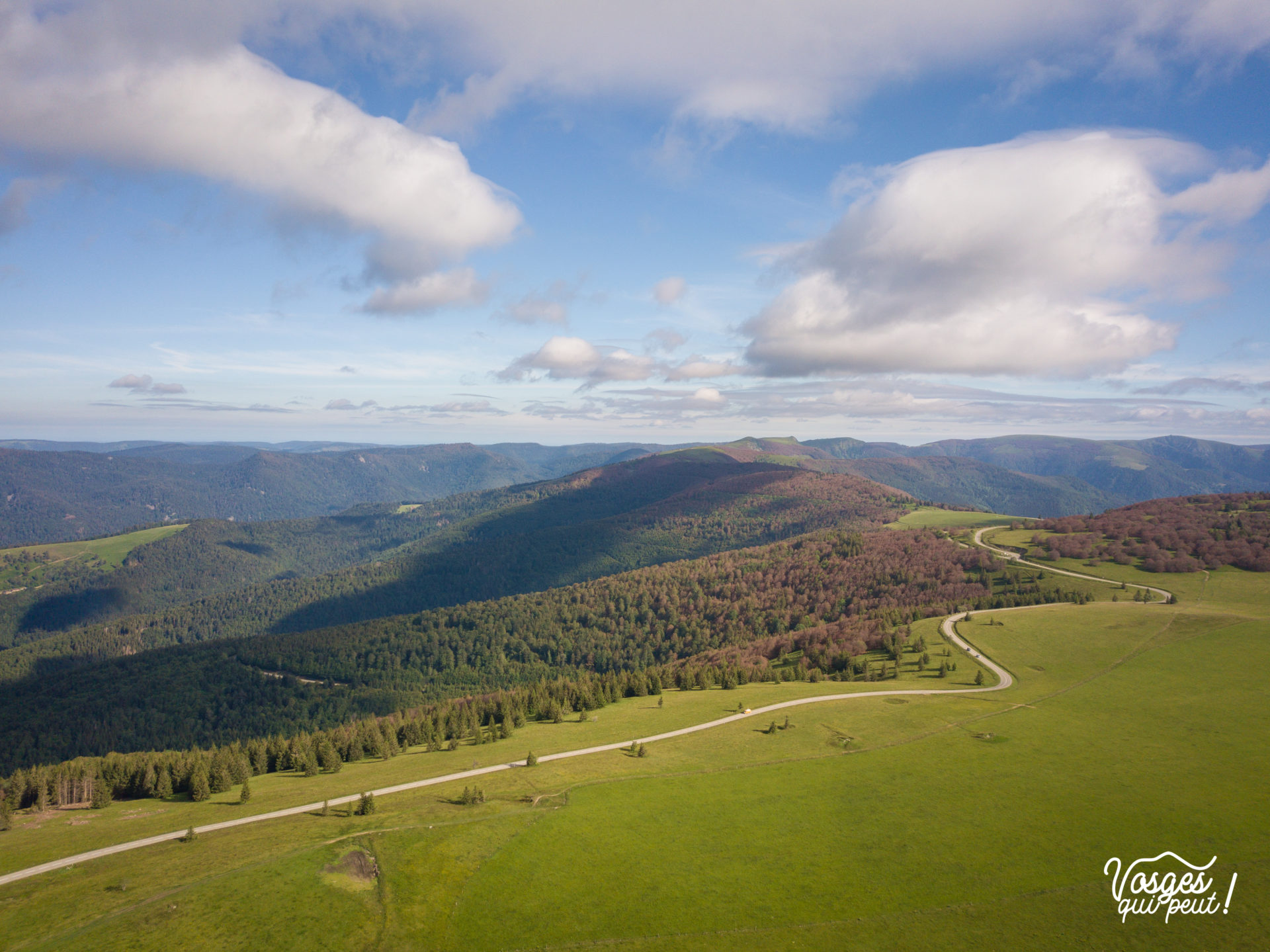 Panorama des crêtes des Vosges