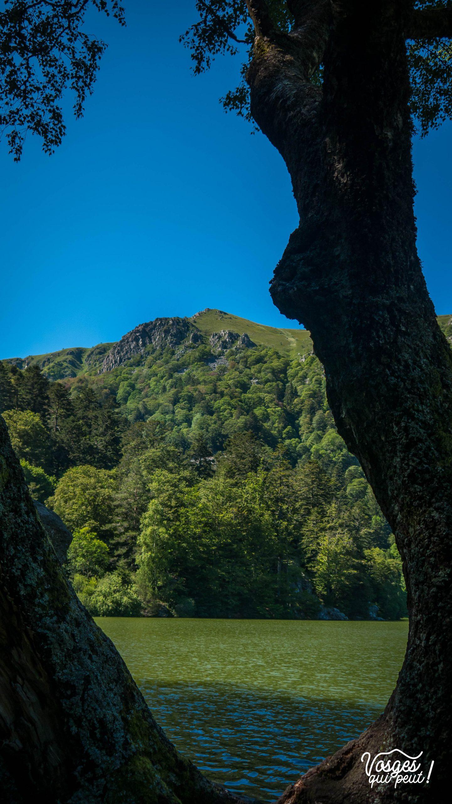Vue sur le lac du Schiessrothried dans les Vosges au pied du Hohneck