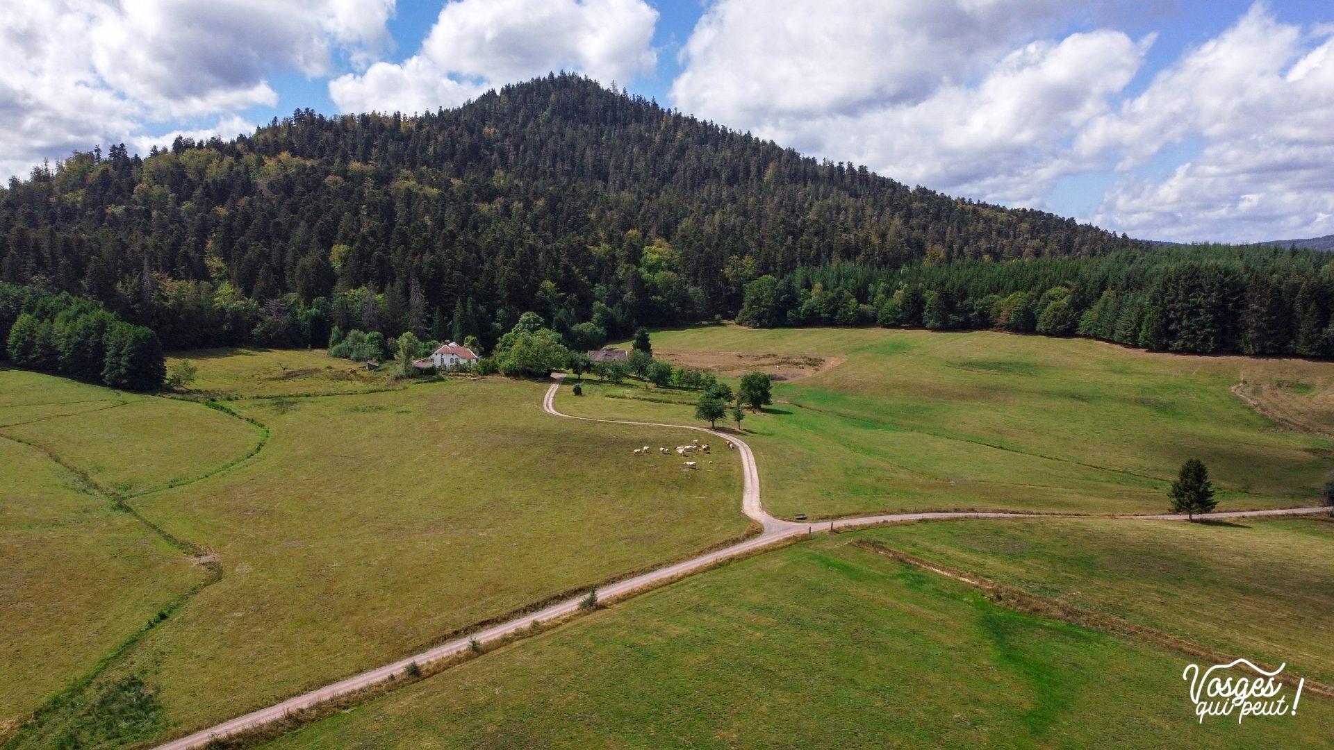 La clairière du Hang dans la vallée de la Bruche, massif des Vosges