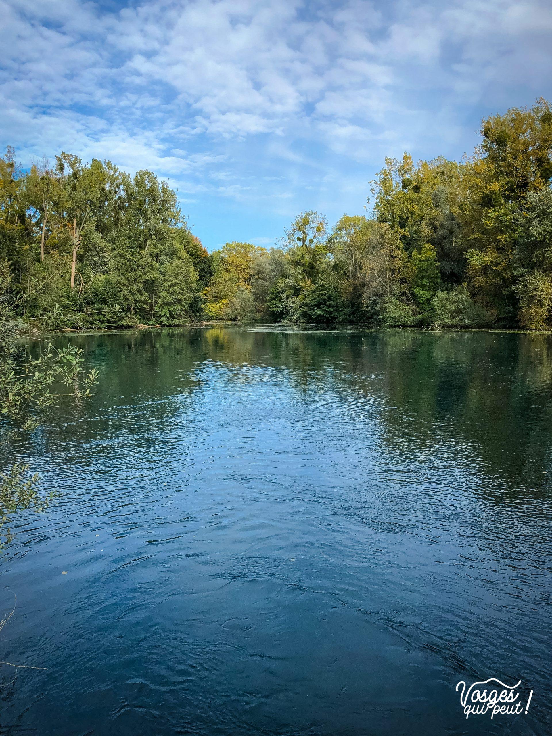 L'étang du Karpfenloch au nord de Strasbourg à la Robertsau