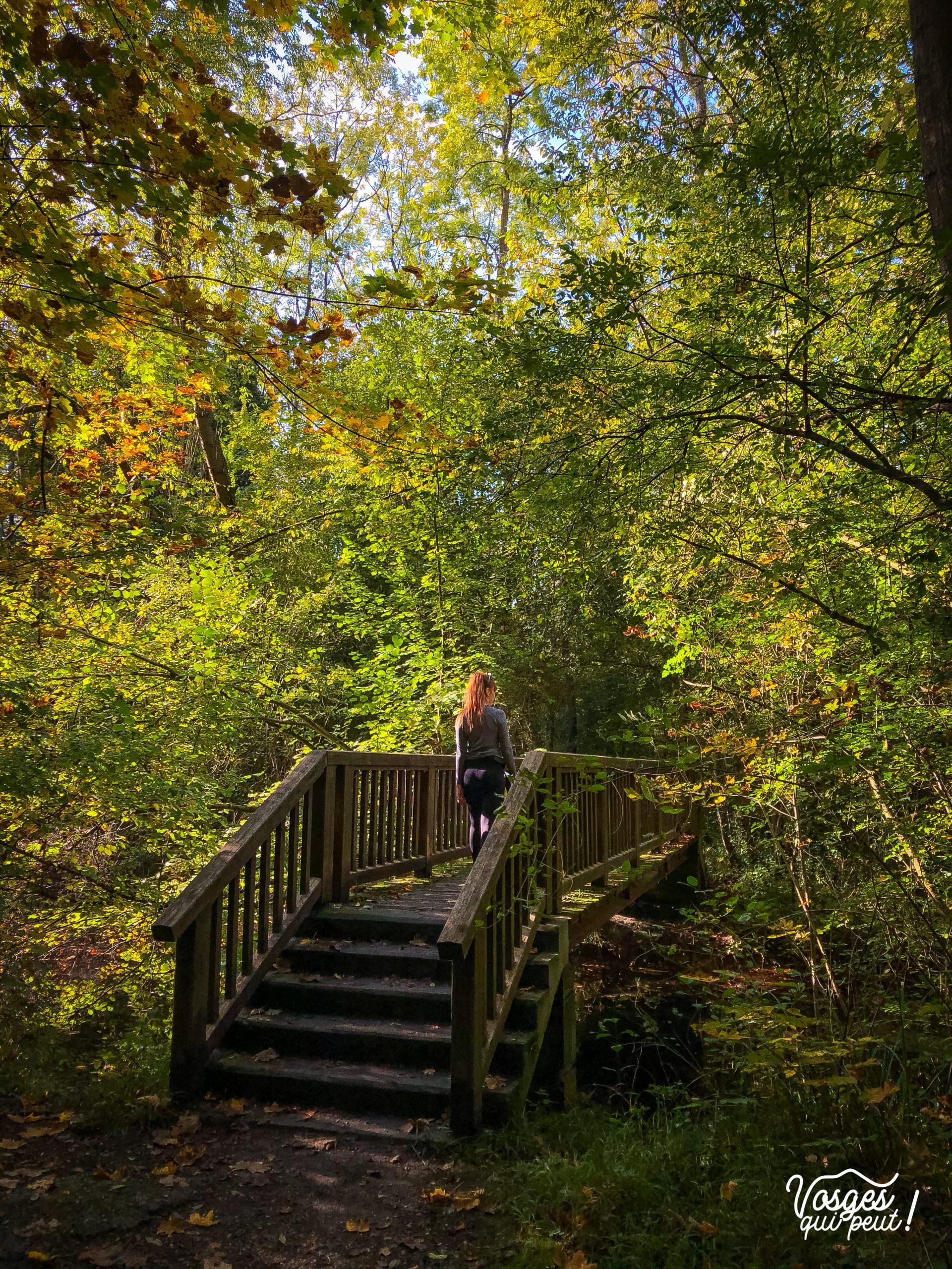 Une jeune fille traverse un pont dans la forêt de la Robertsau