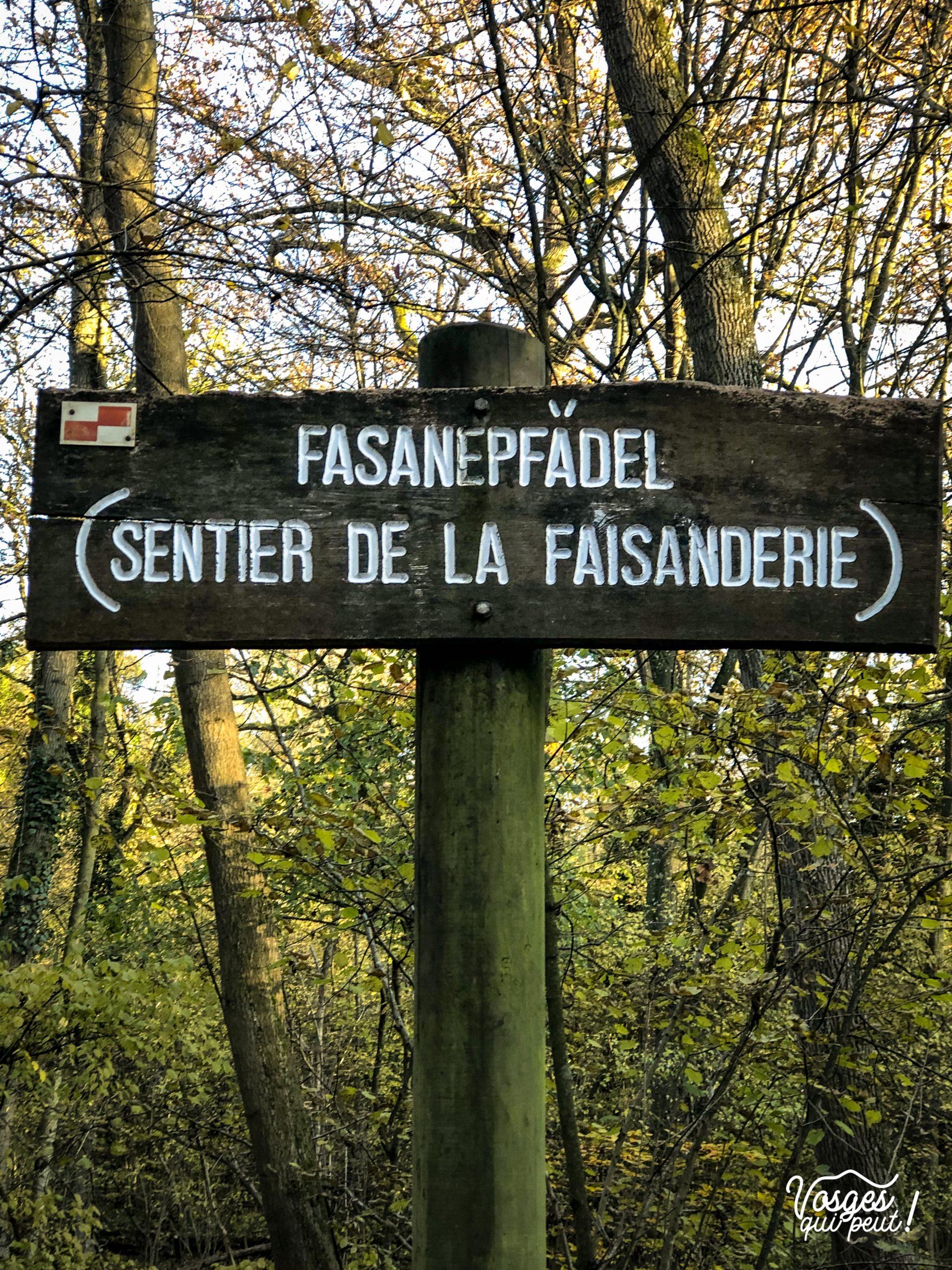 Panneau directionnel du sentier de la faisandrie à Strasbourg