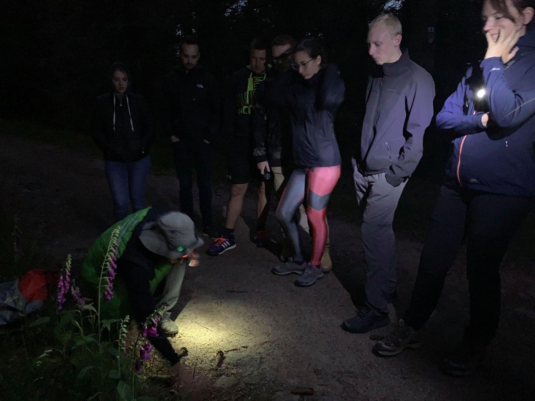 Un groupe de randonneurs et leur guide dans une balade nocture pendant la Nuit des Refuges