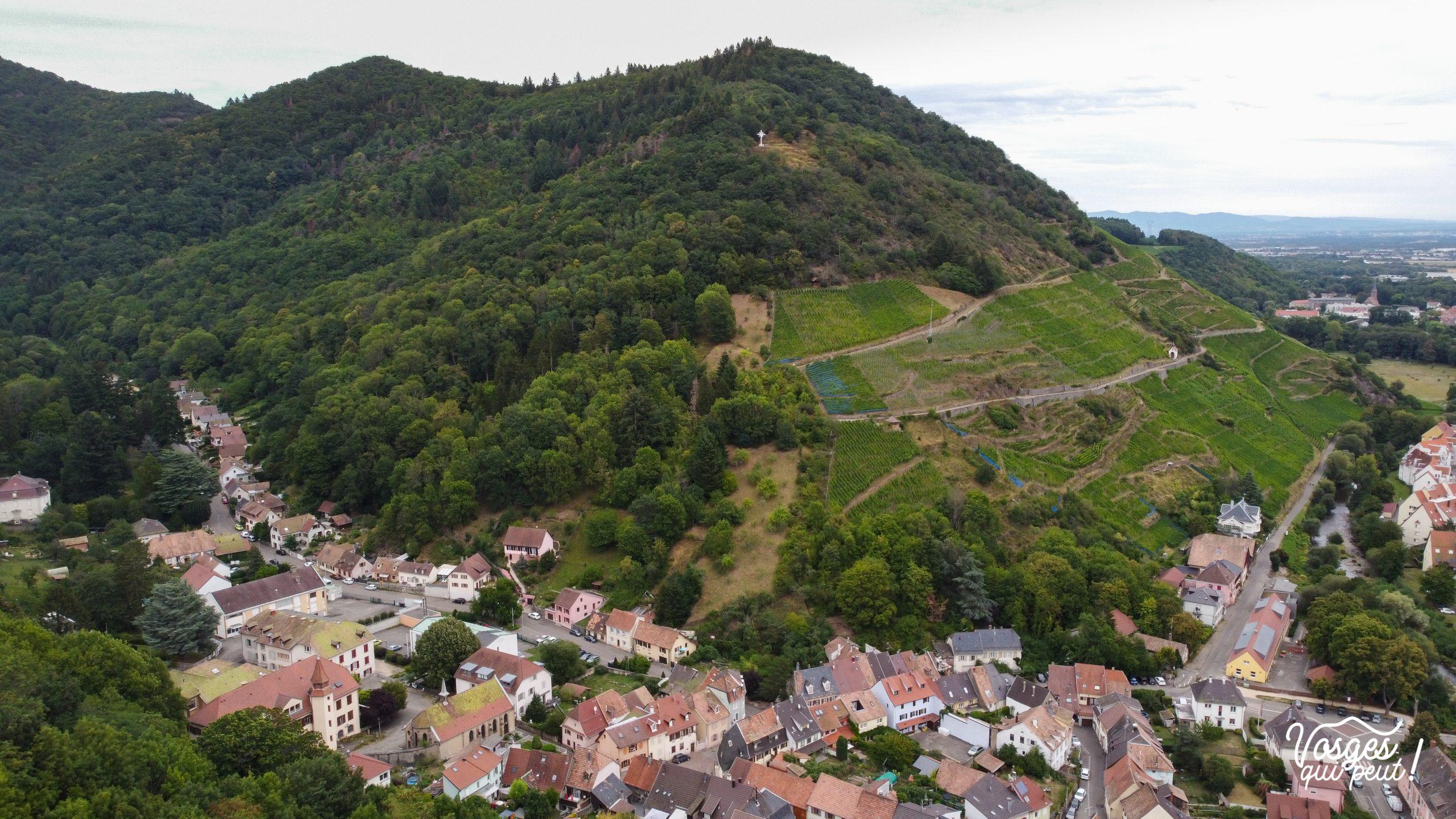 Vue aérienne du vignoble de Thann sur la Route des Vins d'Alsace