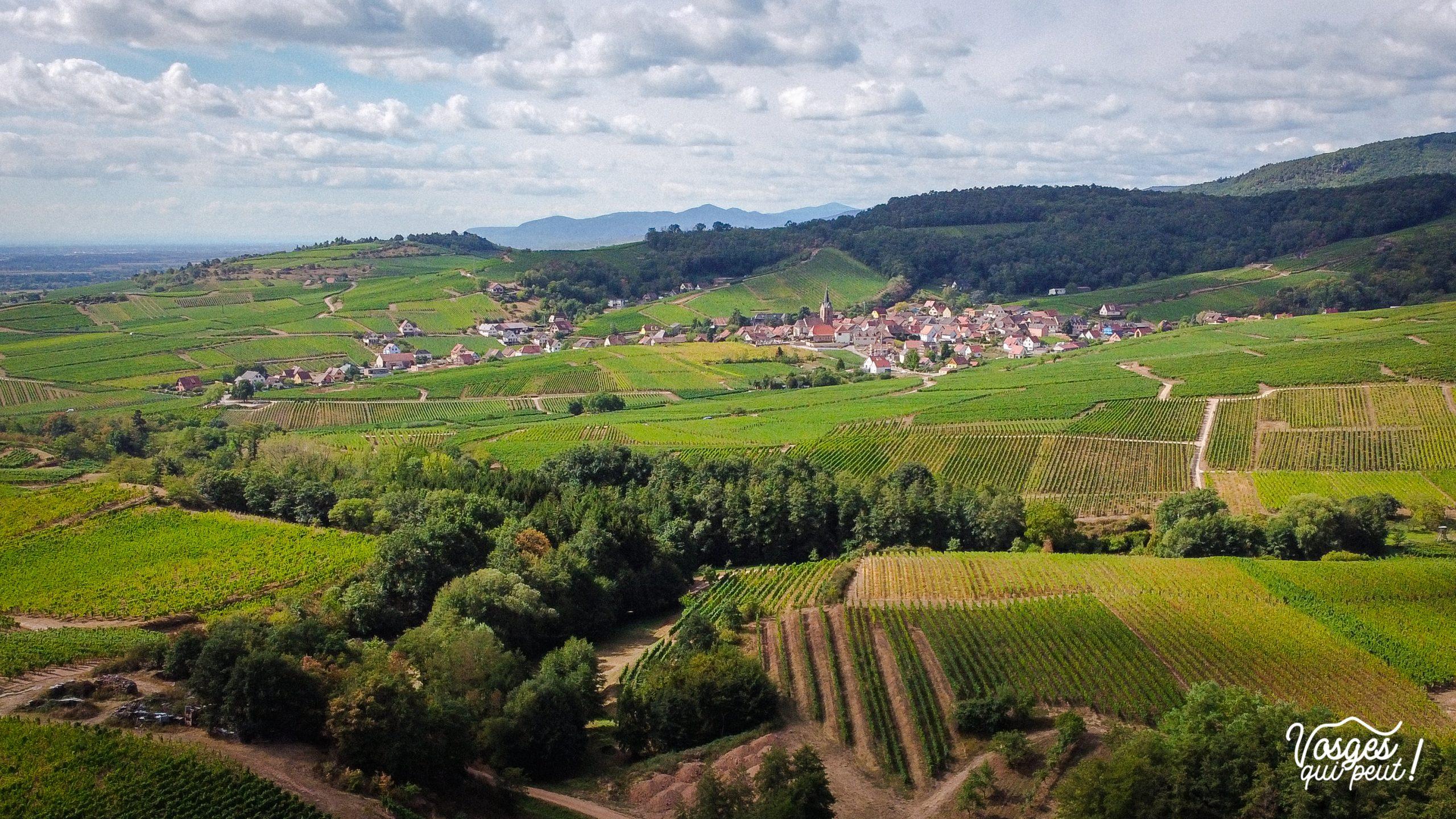 Vue aérienne du vignoble alsacien