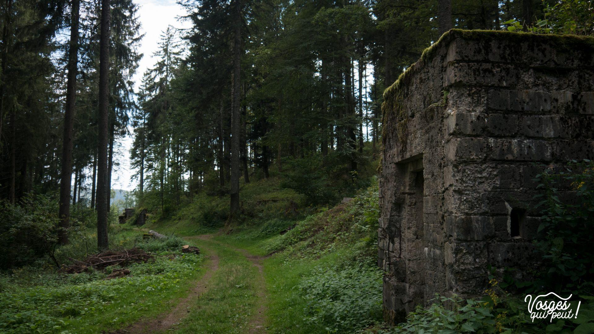 Un blockhaus allemand dans la forêt de la vallée de Sainte-Marie-aux-Mines