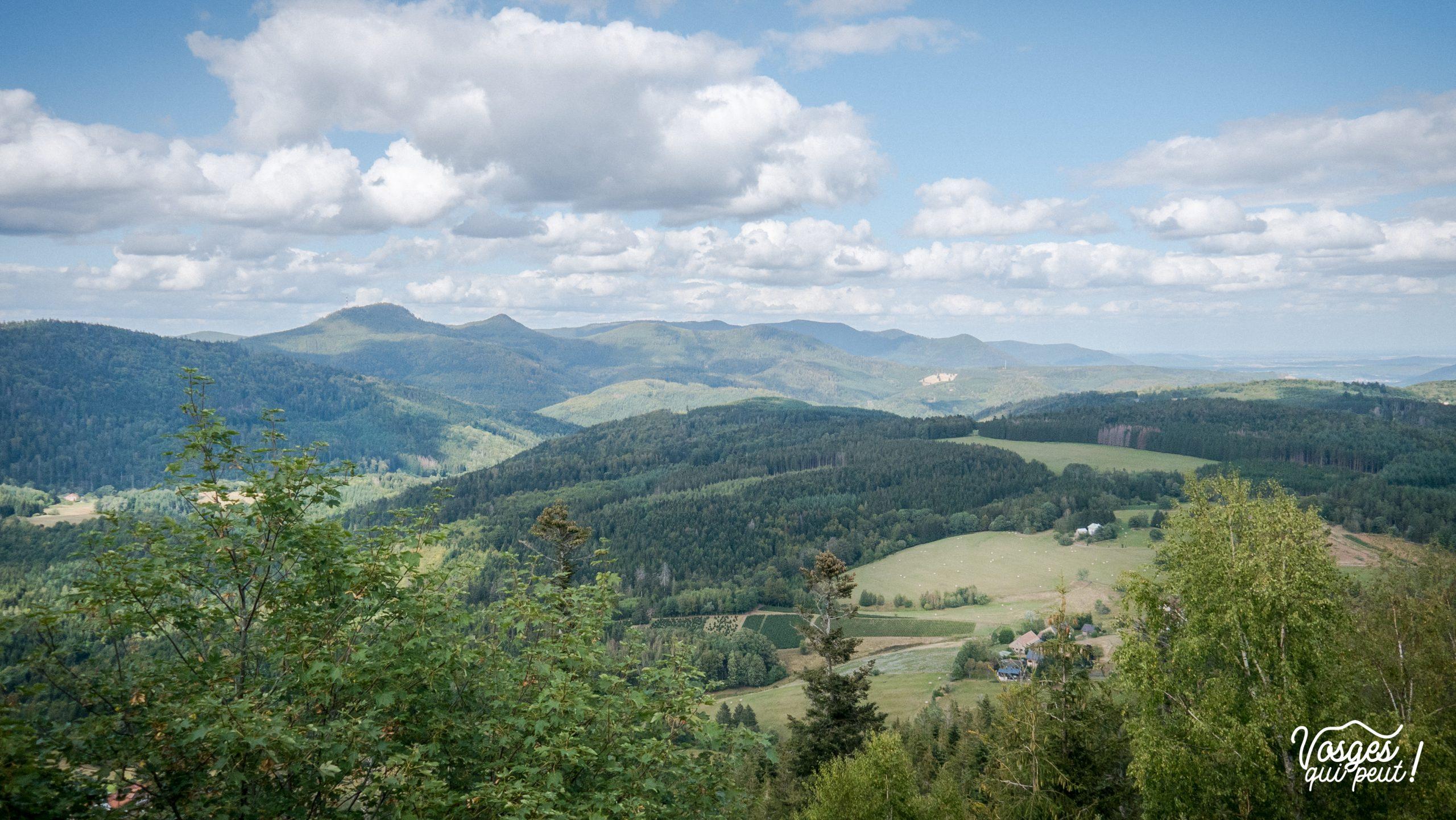 Vue sur la vallée de la Bruche depuis le château de Salm