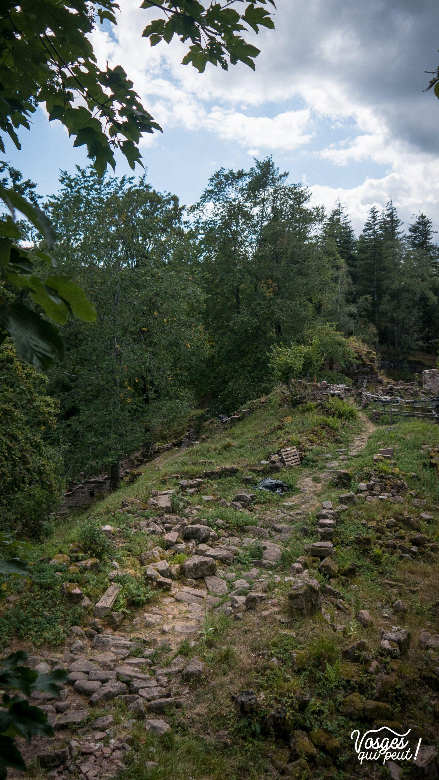 Ruines du château de Salm et son promontoire panoramique