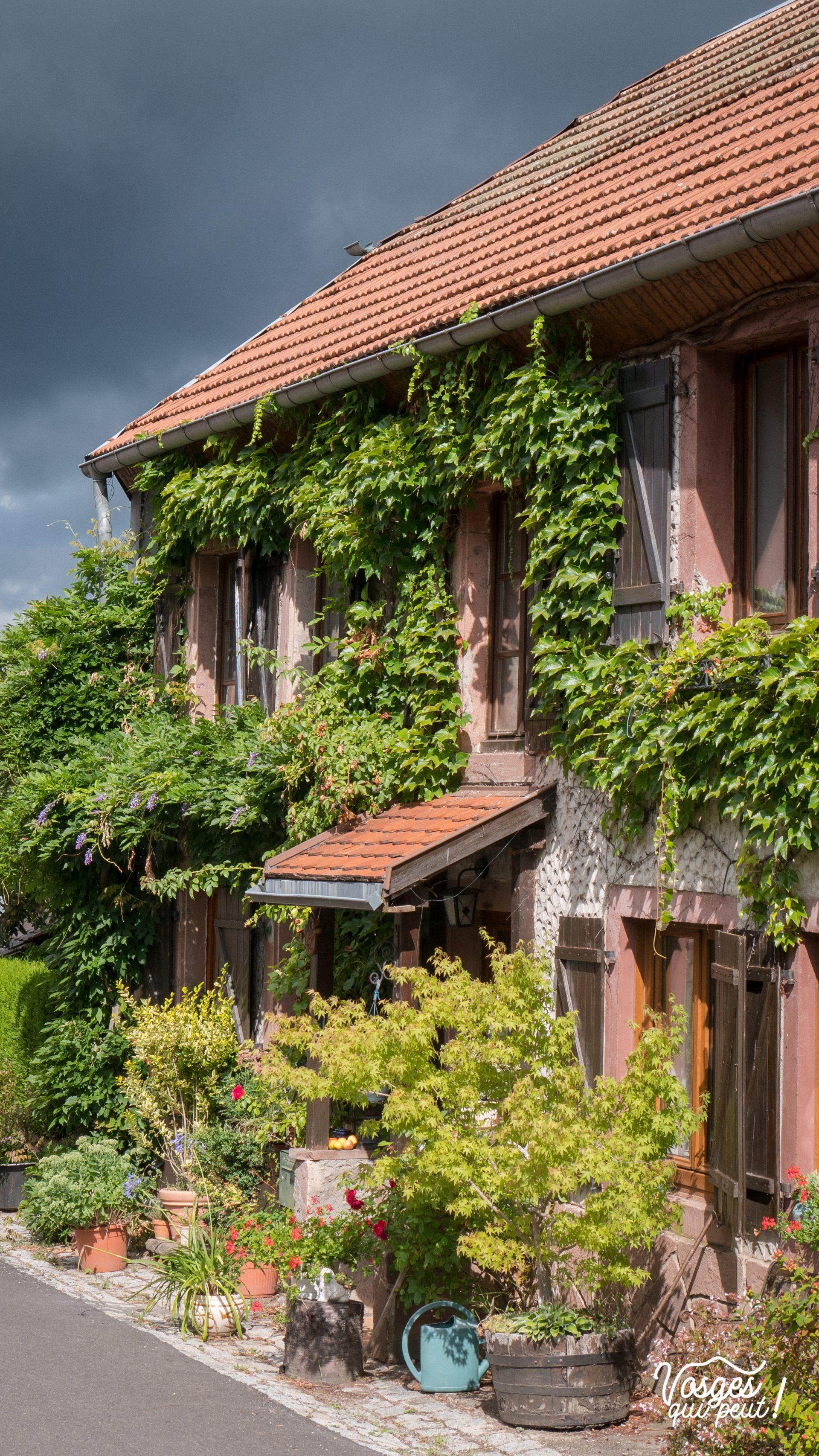 Maison fleurie dans le village de Bellefosse dans la vallée de la Bruche
