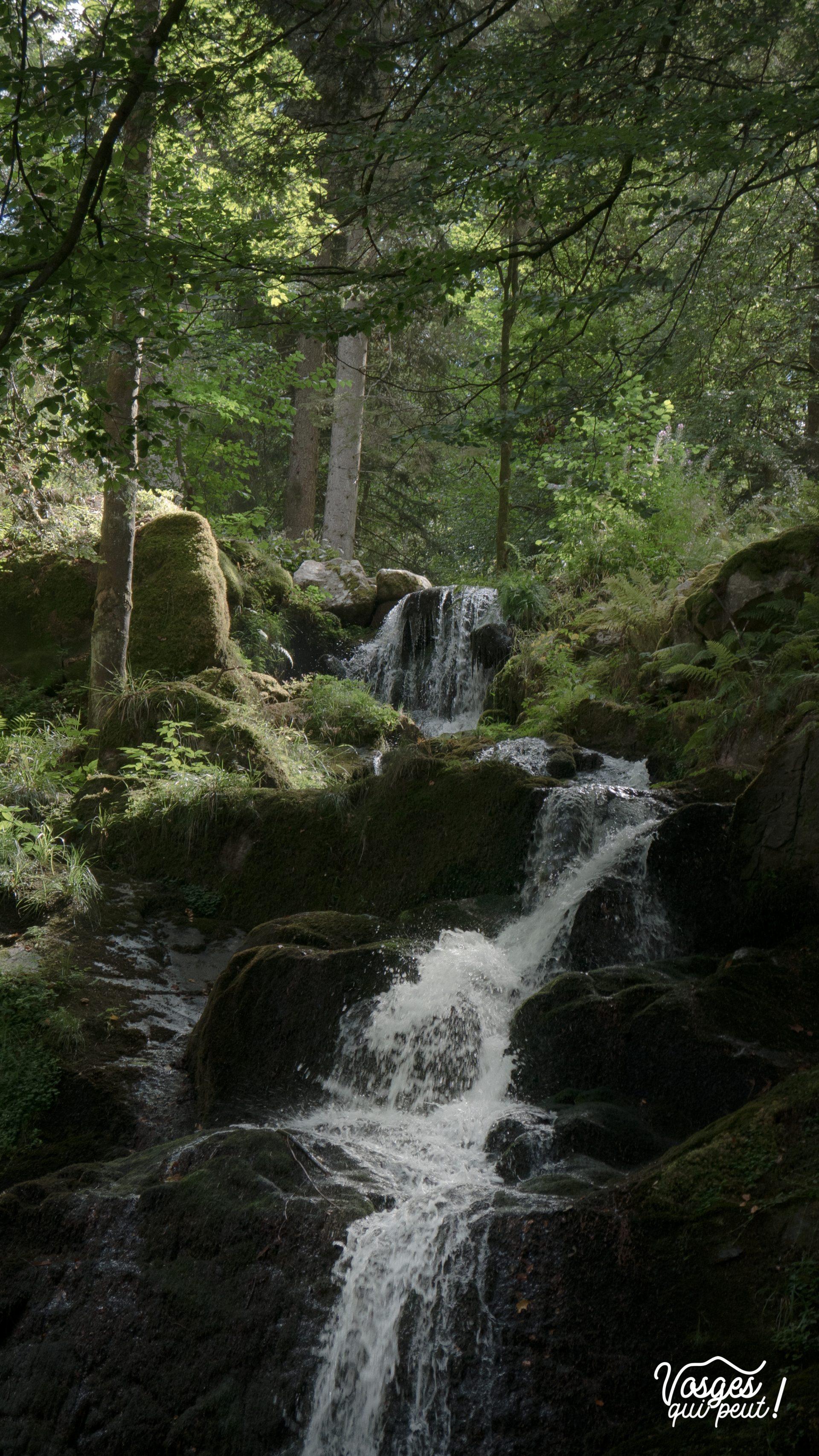 L'eau de la cascade de la Serva jaillit en pleine forêt