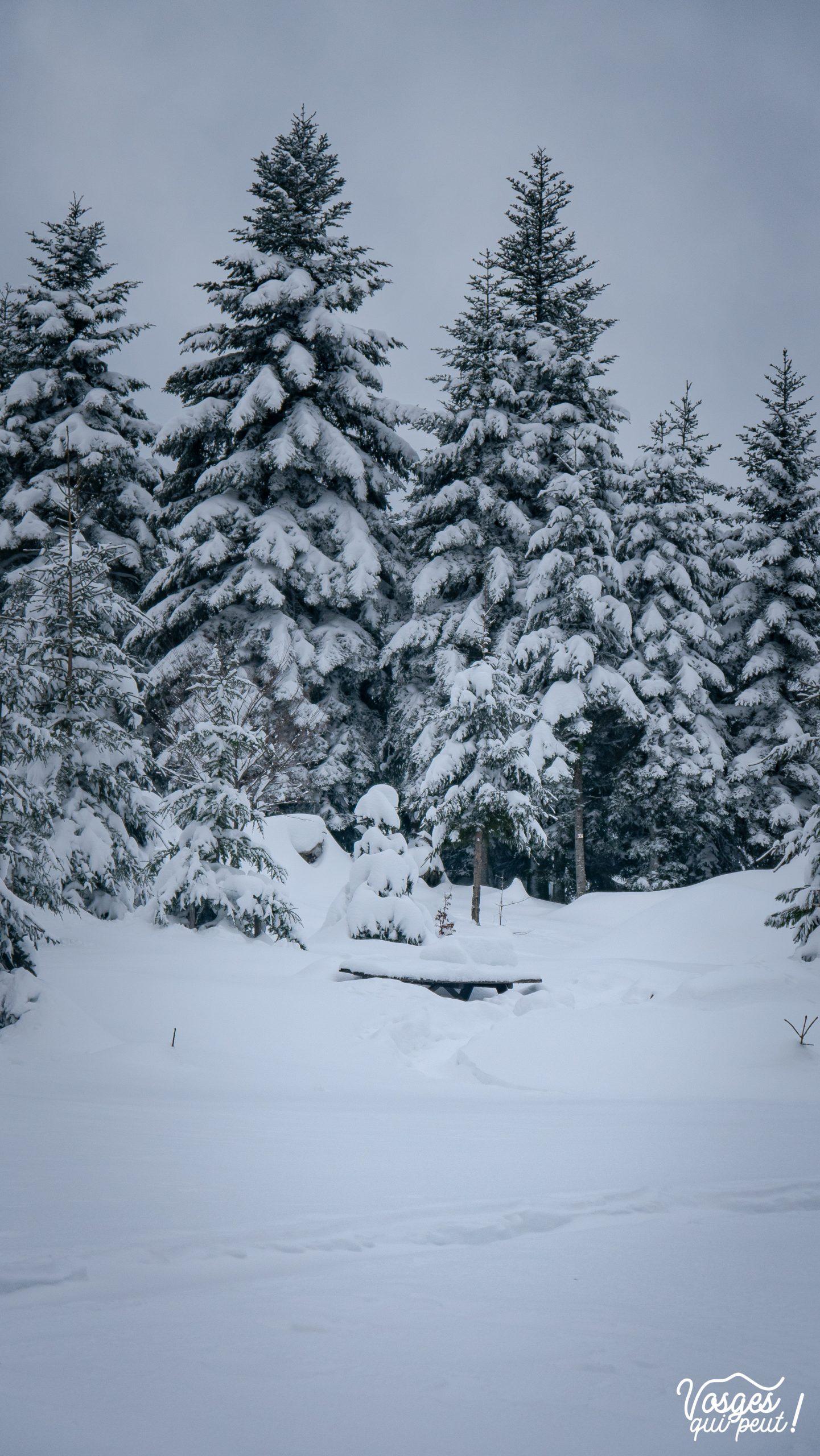 La table de pique-nique de Kohlplatz sous la neige