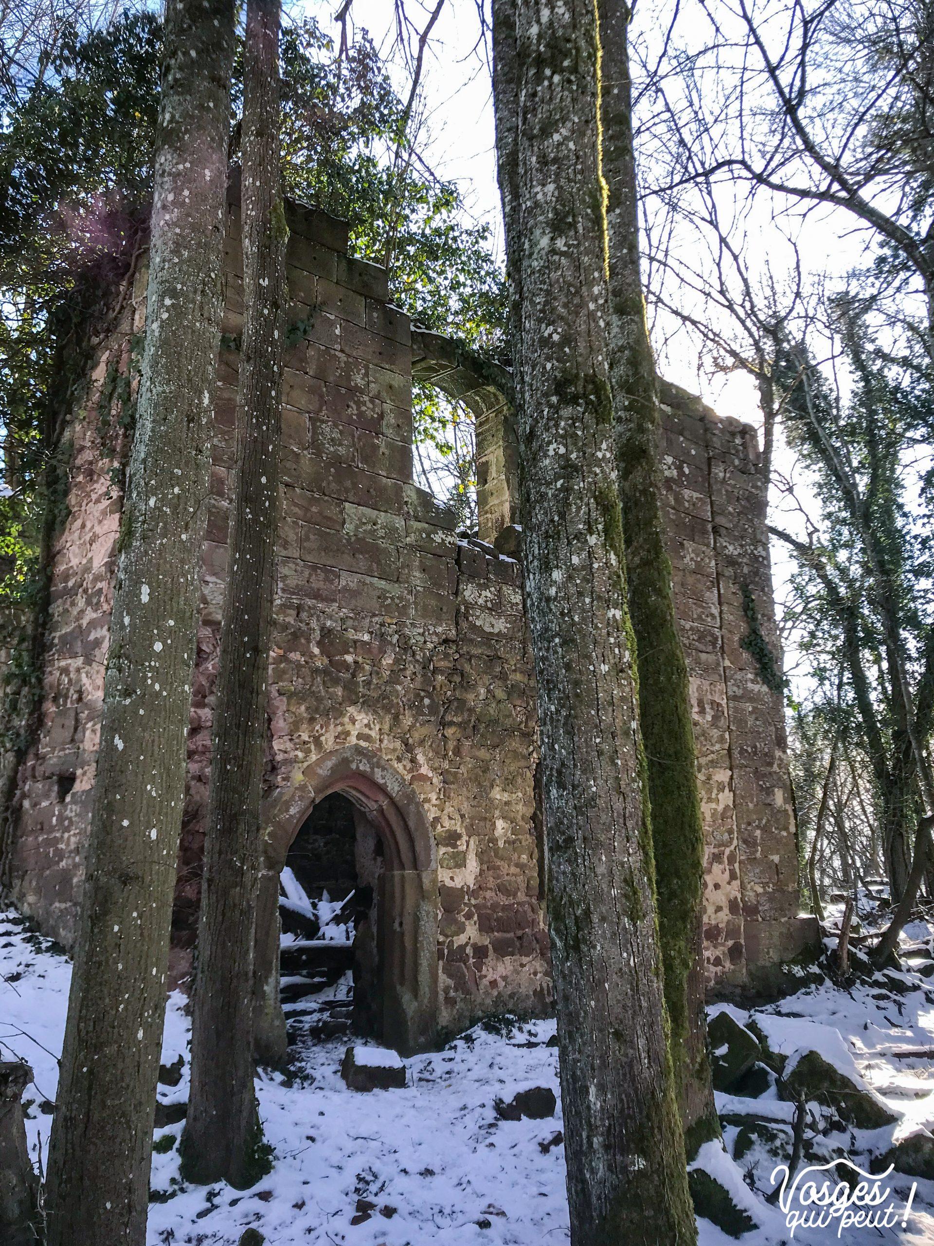 Les ruines du château du Herrenstein dans les Vosges