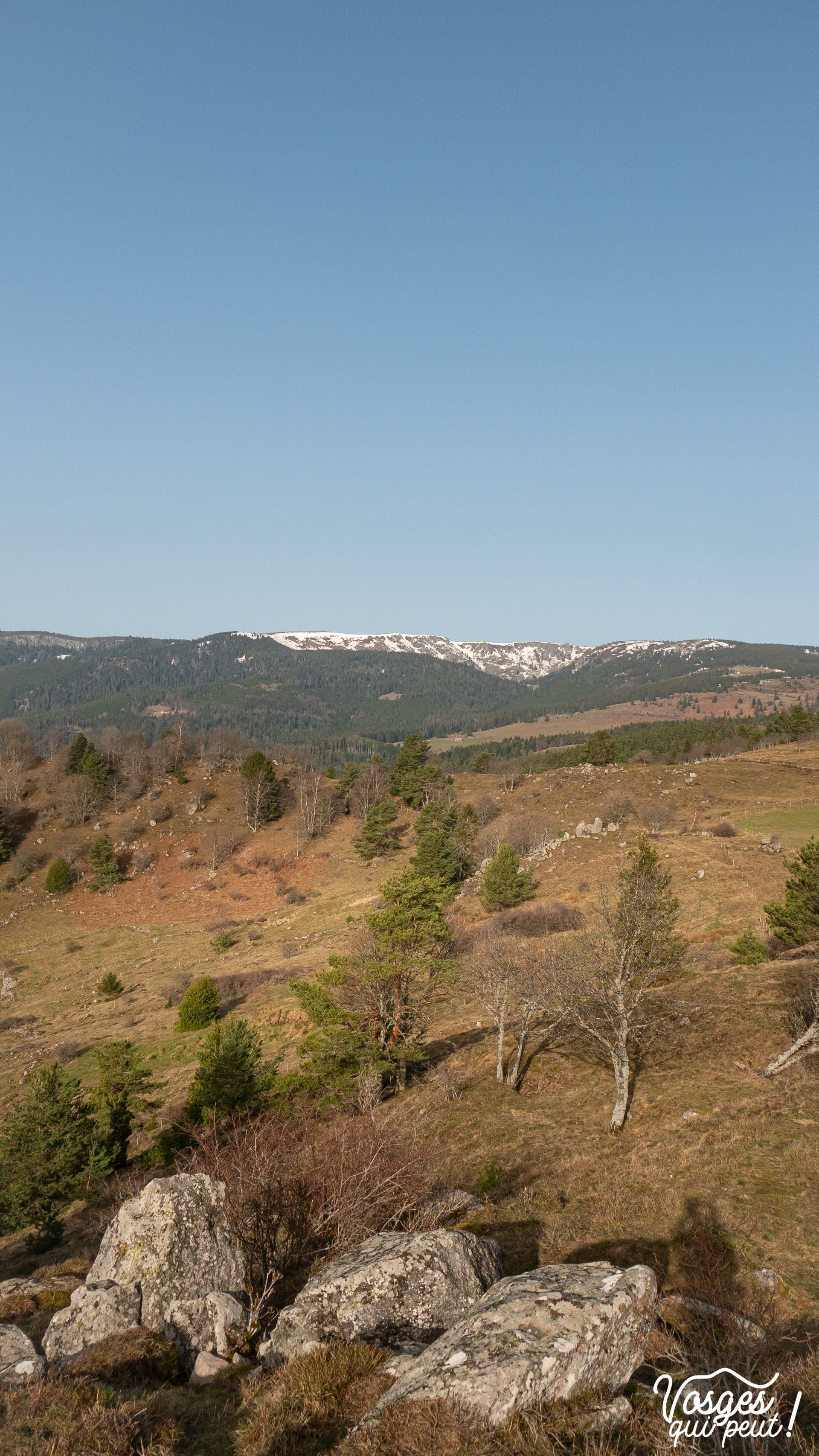 Vue sur les hautes chaumes des Vosges