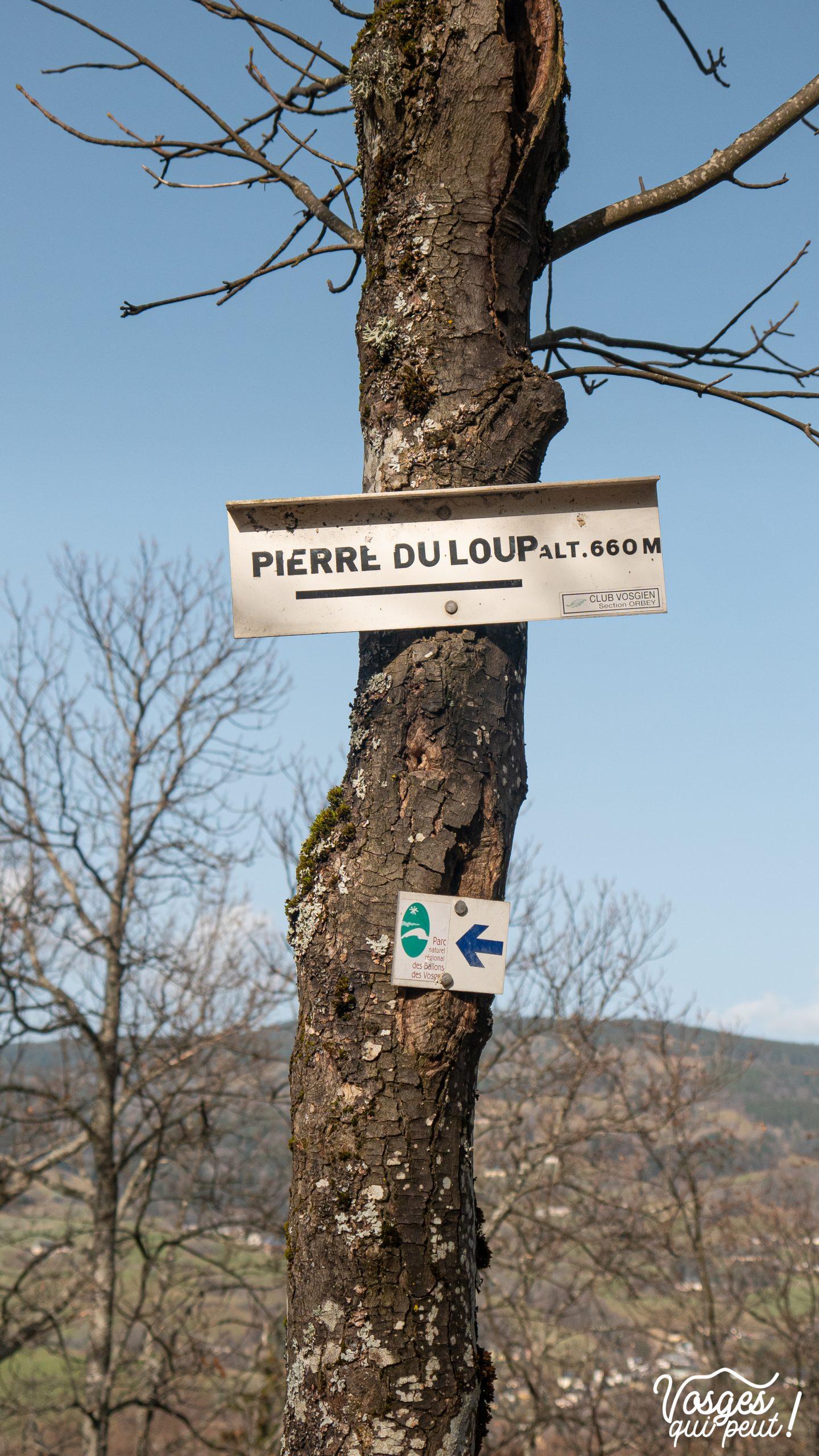 Panneau indicatif du Club Vosgien pendant une randonnée dans les Vosges