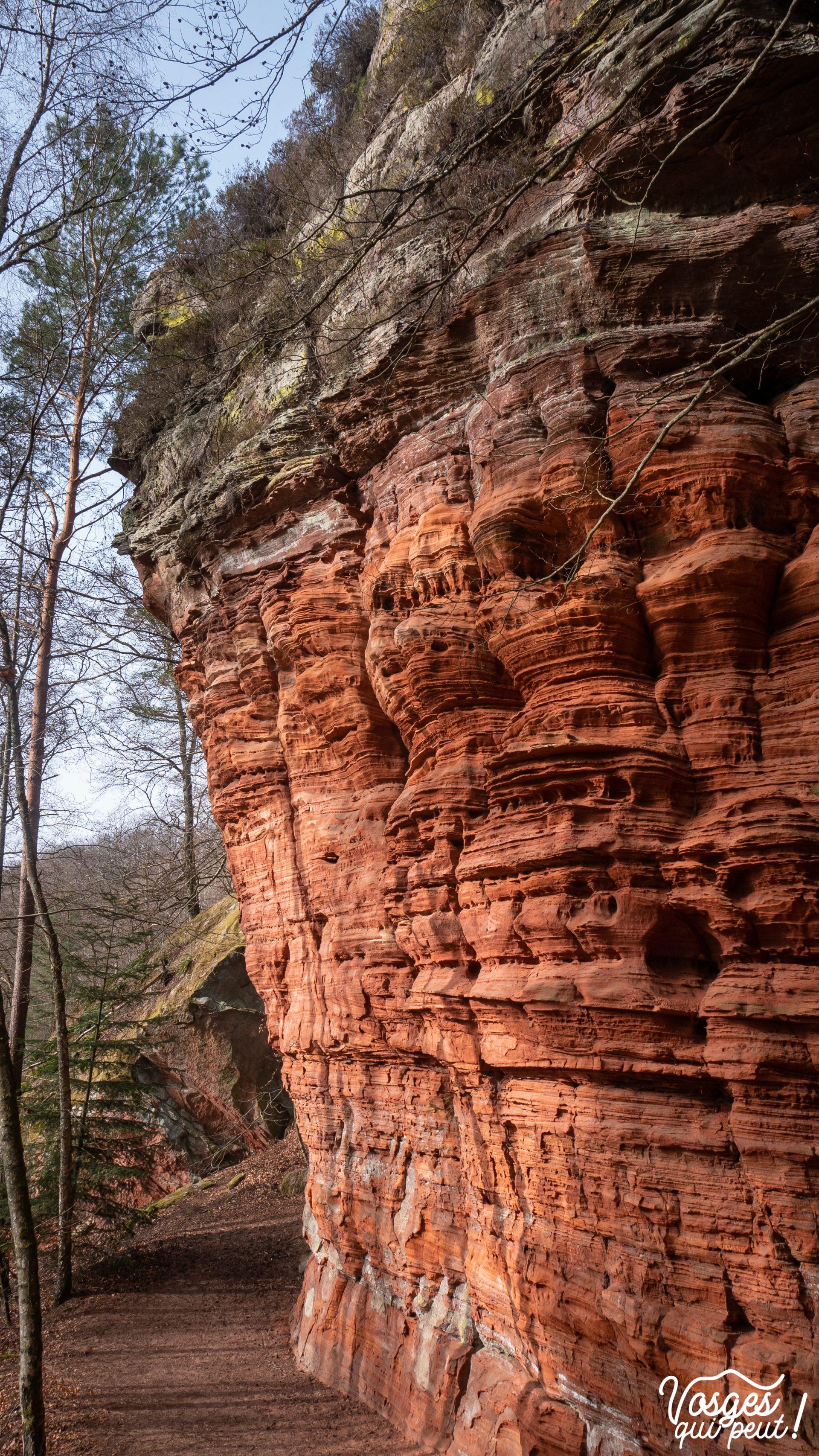Le rocher de l'Altschlossfelsen dans le Pays de Bitche