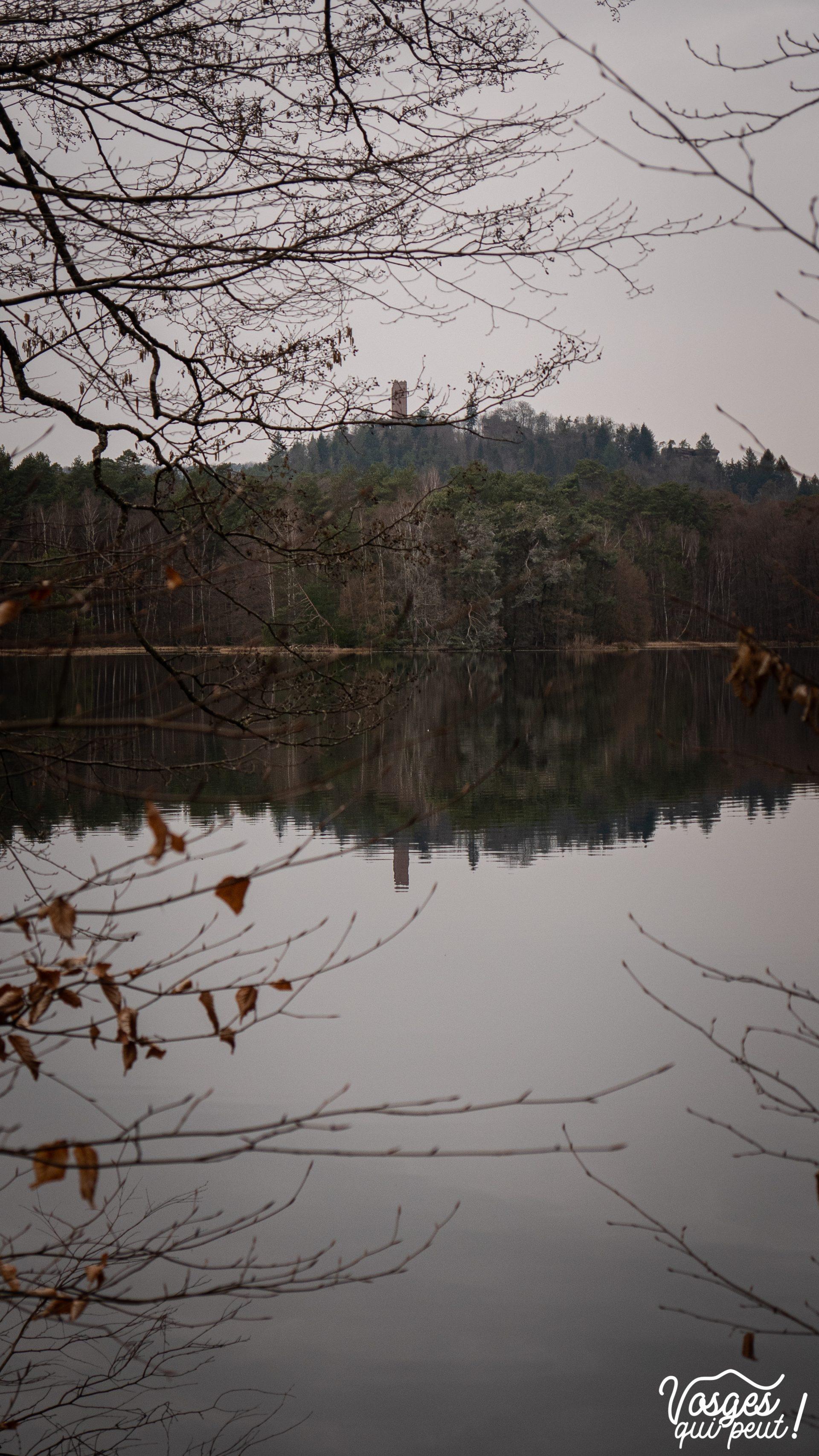 Étang de Hanau et château de Waldeck dans le Pays de Bitche