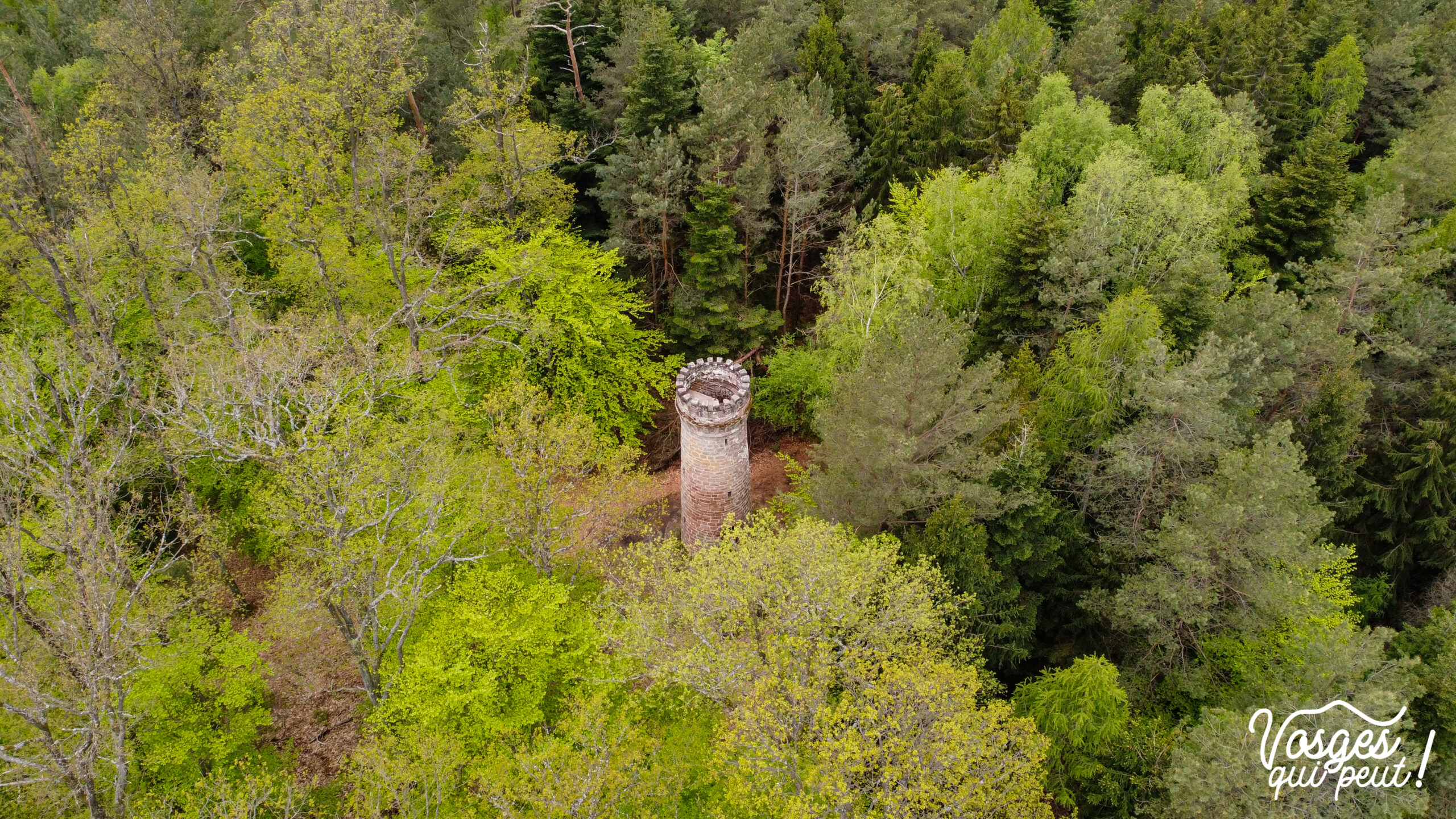 La tour du Wasenkoepfel dans les Vosges du Nord