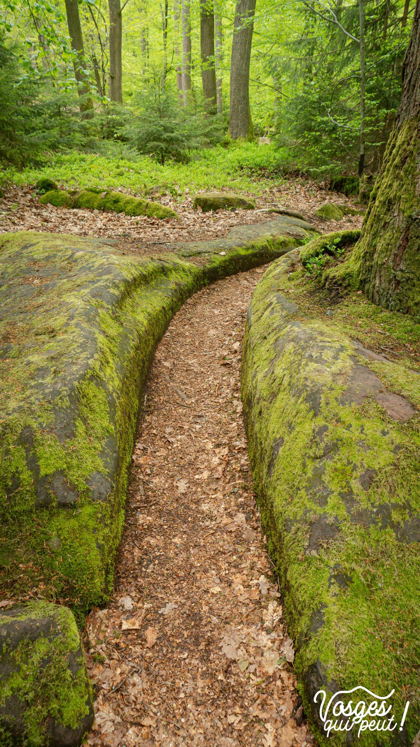 Canal d'irrigation creusée dans la pierre