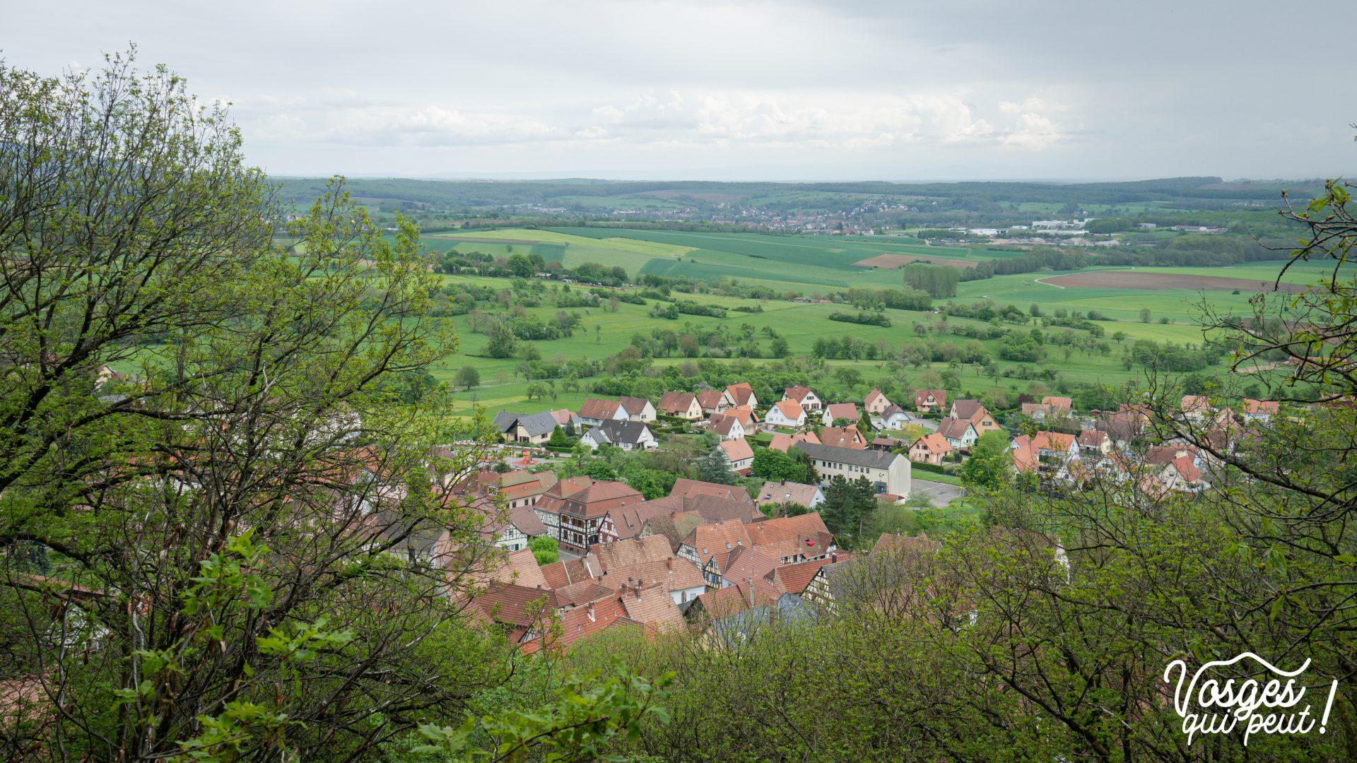 Panorama depuis le belvédère d'Oberbronn