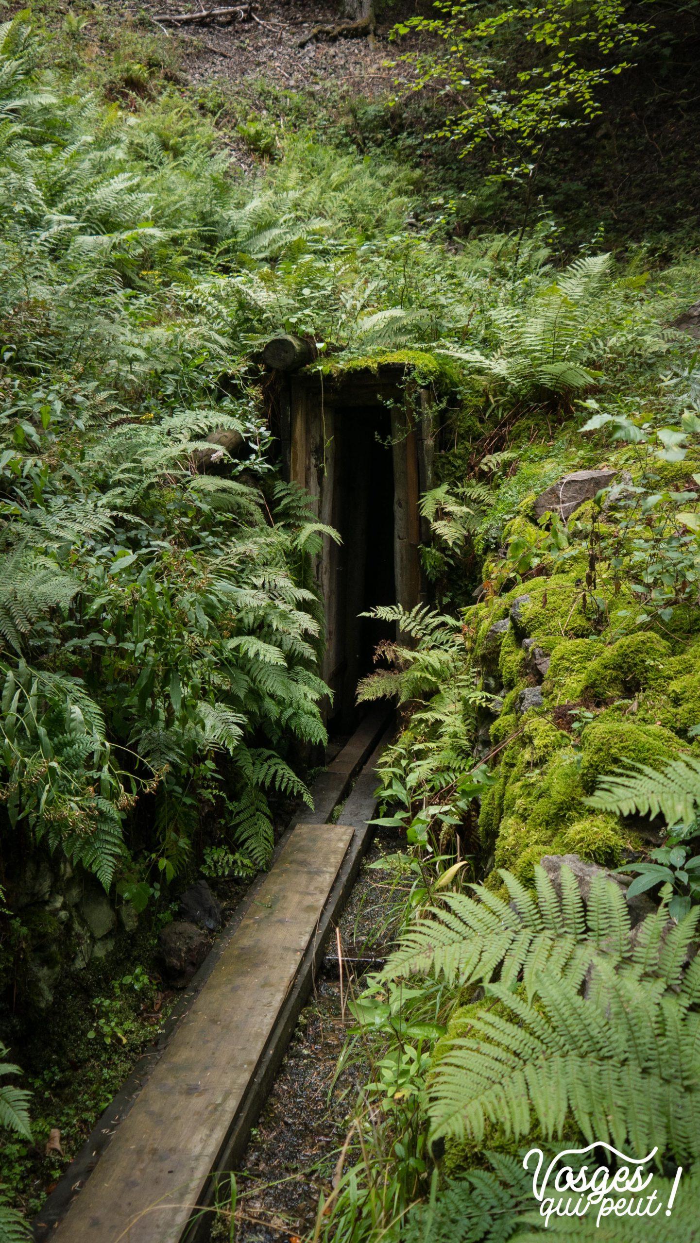 Sortie d'une mine d'argent dans le Massif des Vosges