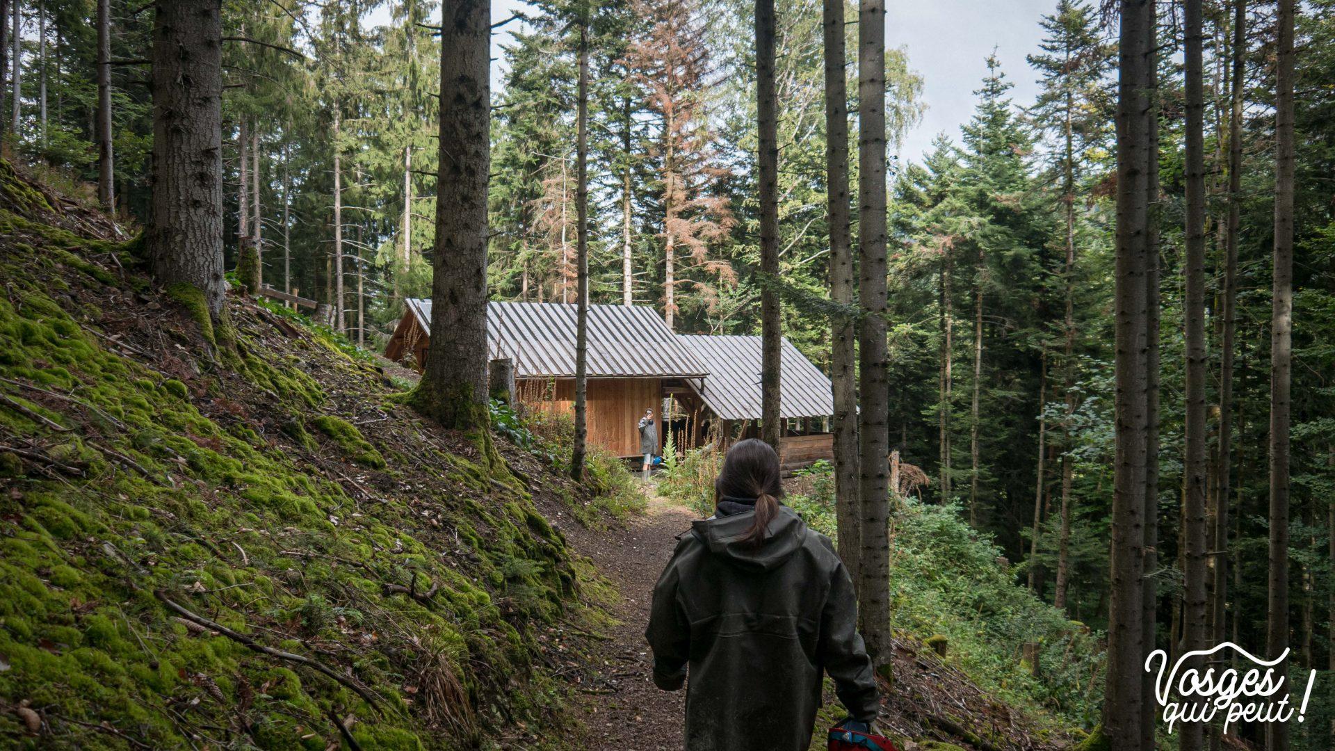 Le carreau restauré d'une mine d'argent dans le Massif des Vosges